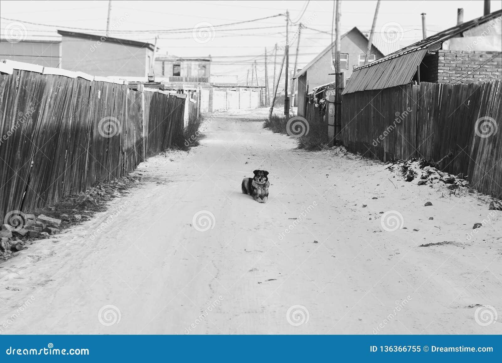 单独在街道