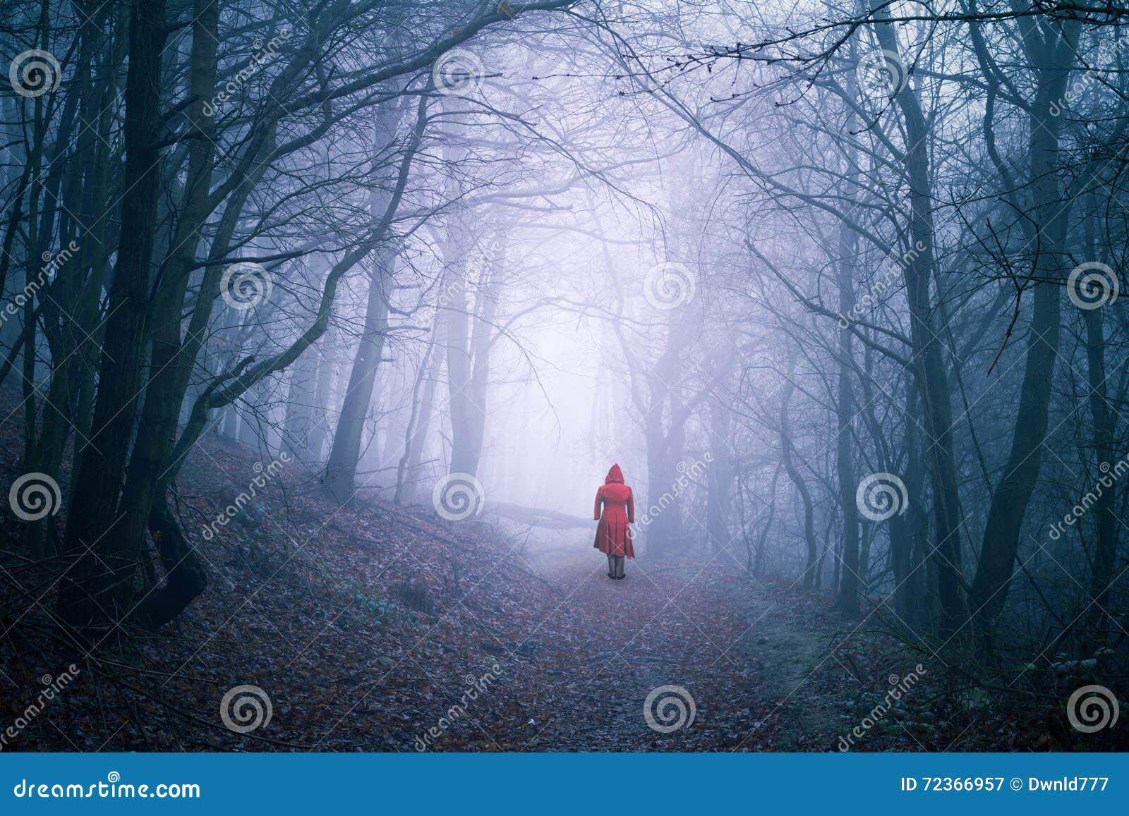 单独妇女在黑暗的森林里