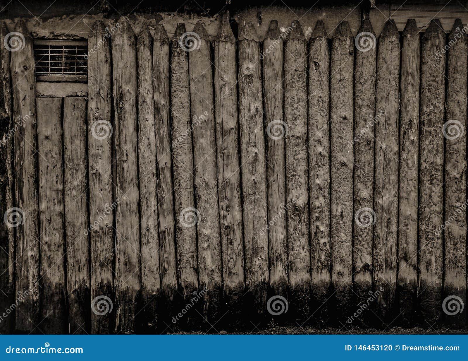 单色木篱芭