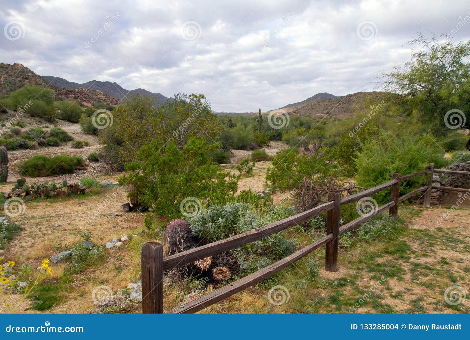 南山公园,菲尼斯,亚利桑那