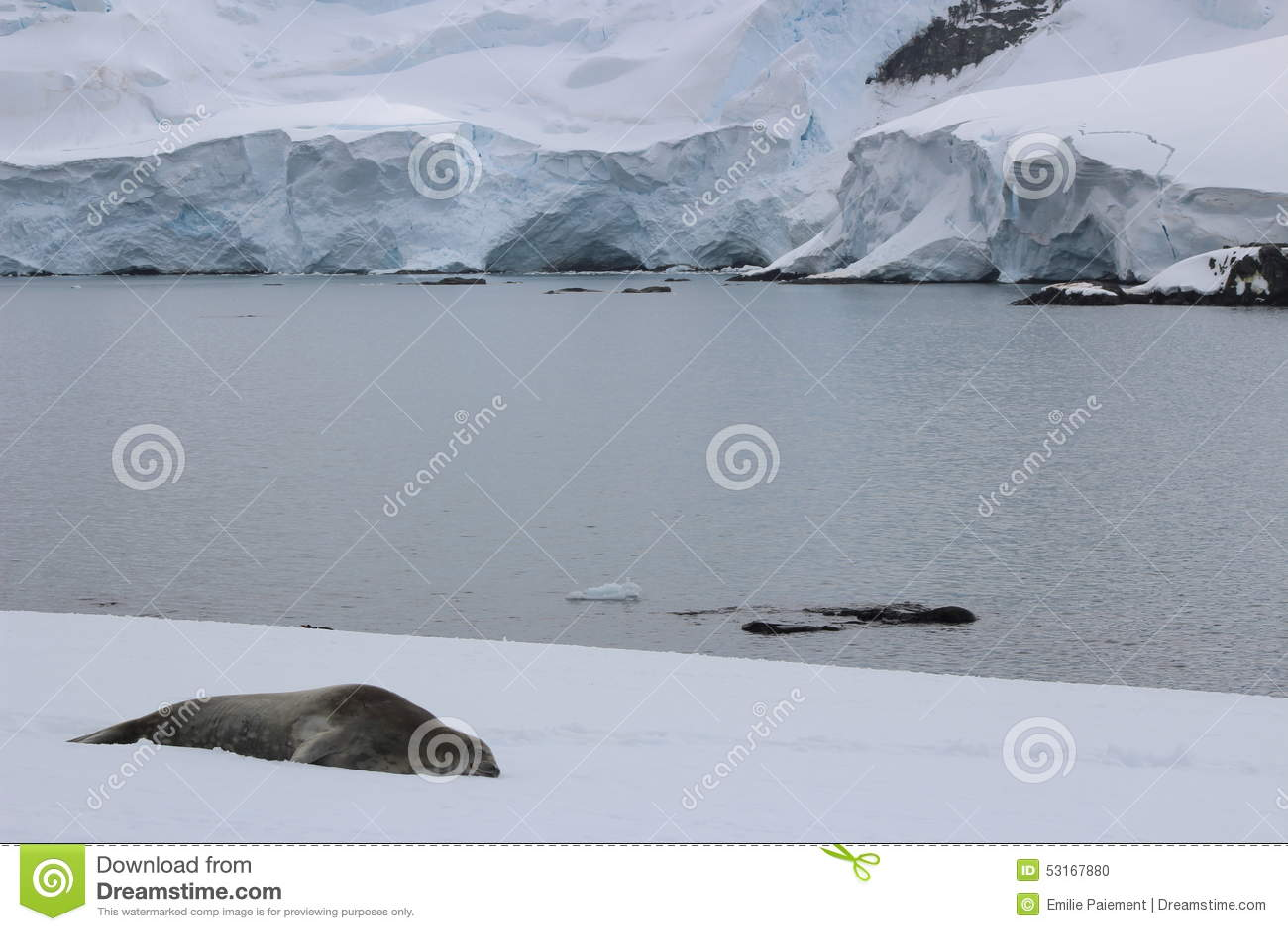 南极洲-封印
