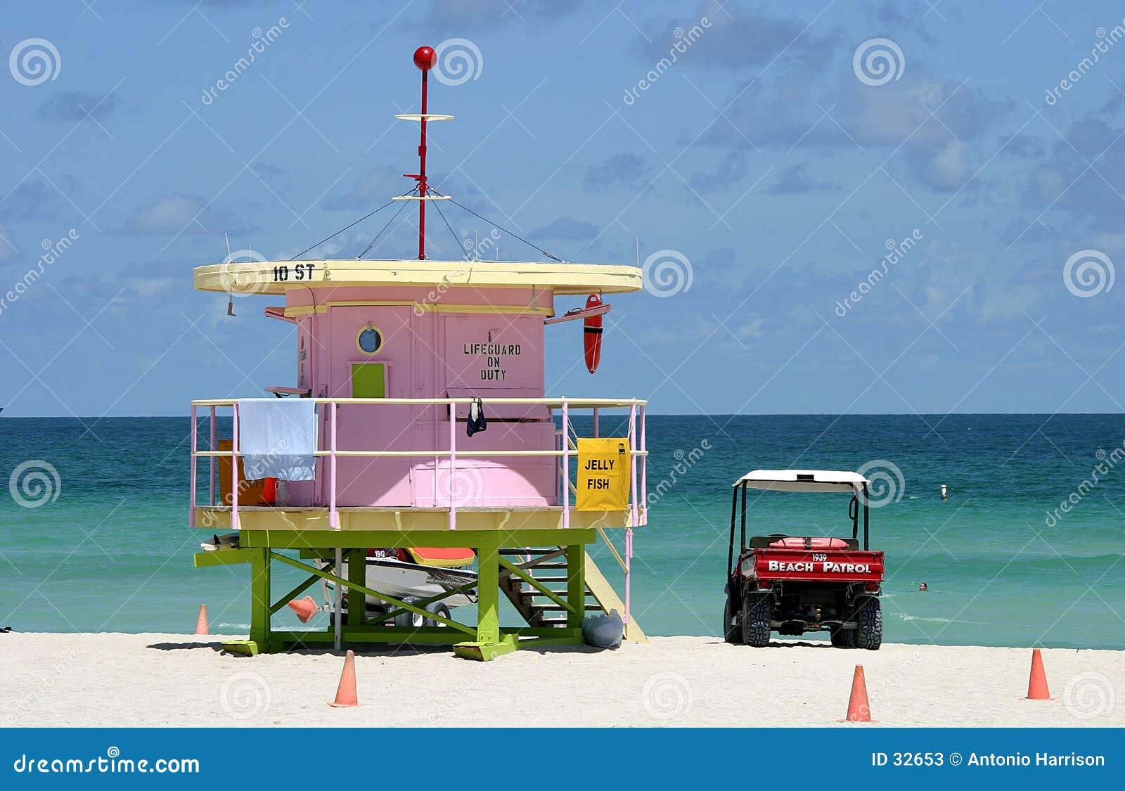 南海滩的巡逻