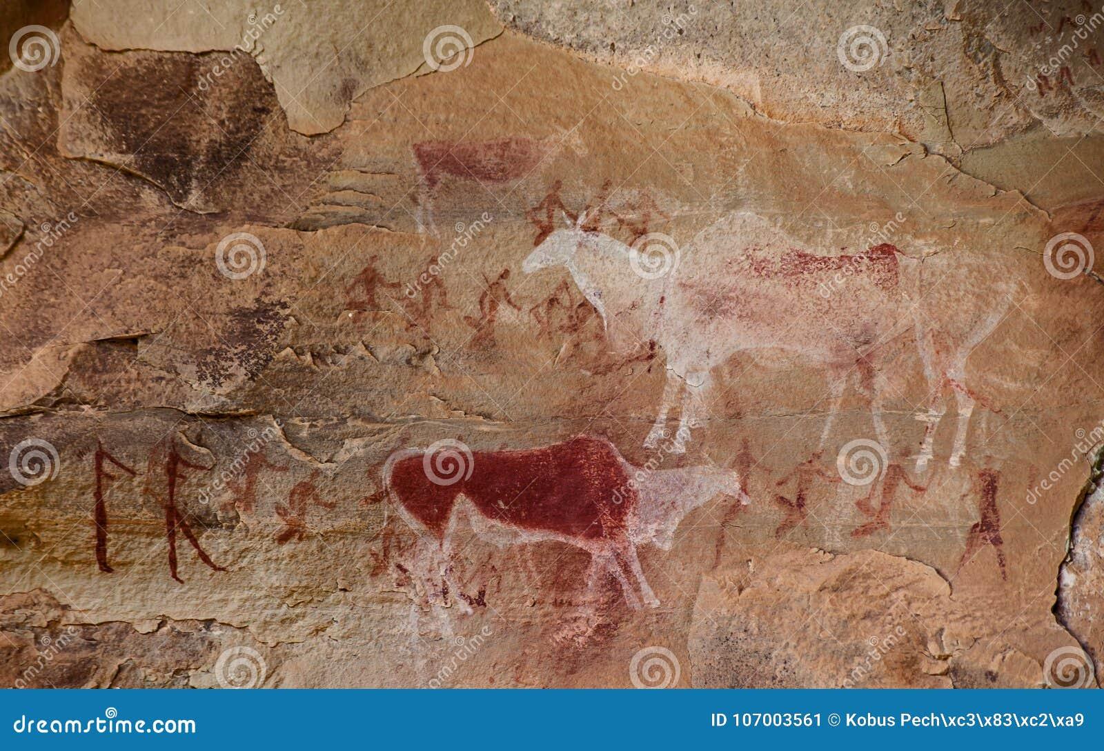 南非丛林居民岩石艺术10