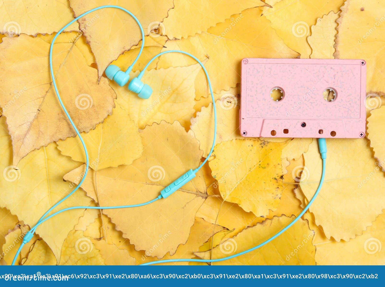 卡型盒式录音机和耳机在黄色落叶 顶视图 减速火箭的技术 秋天时间