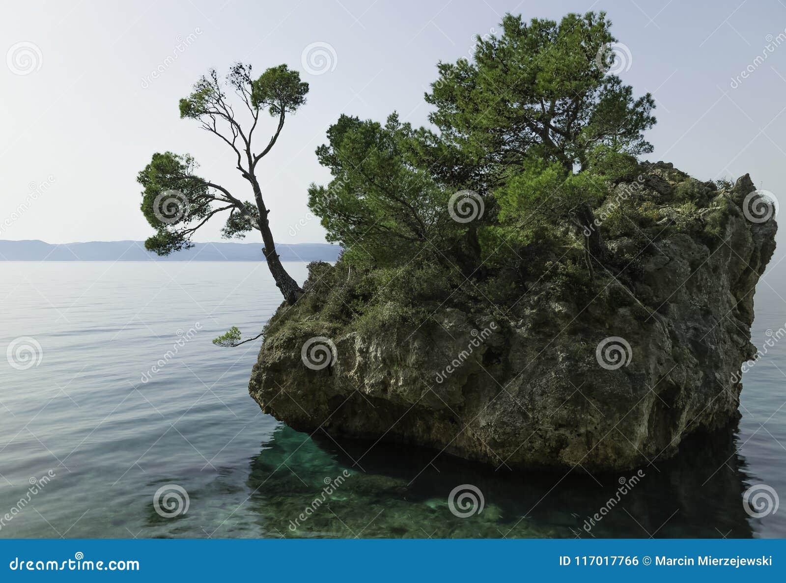 卡梅尼火山Brela -小著名海岛在Brela,马卡尔斯卡里维埃拉,达尔马提亚,克罗地亚