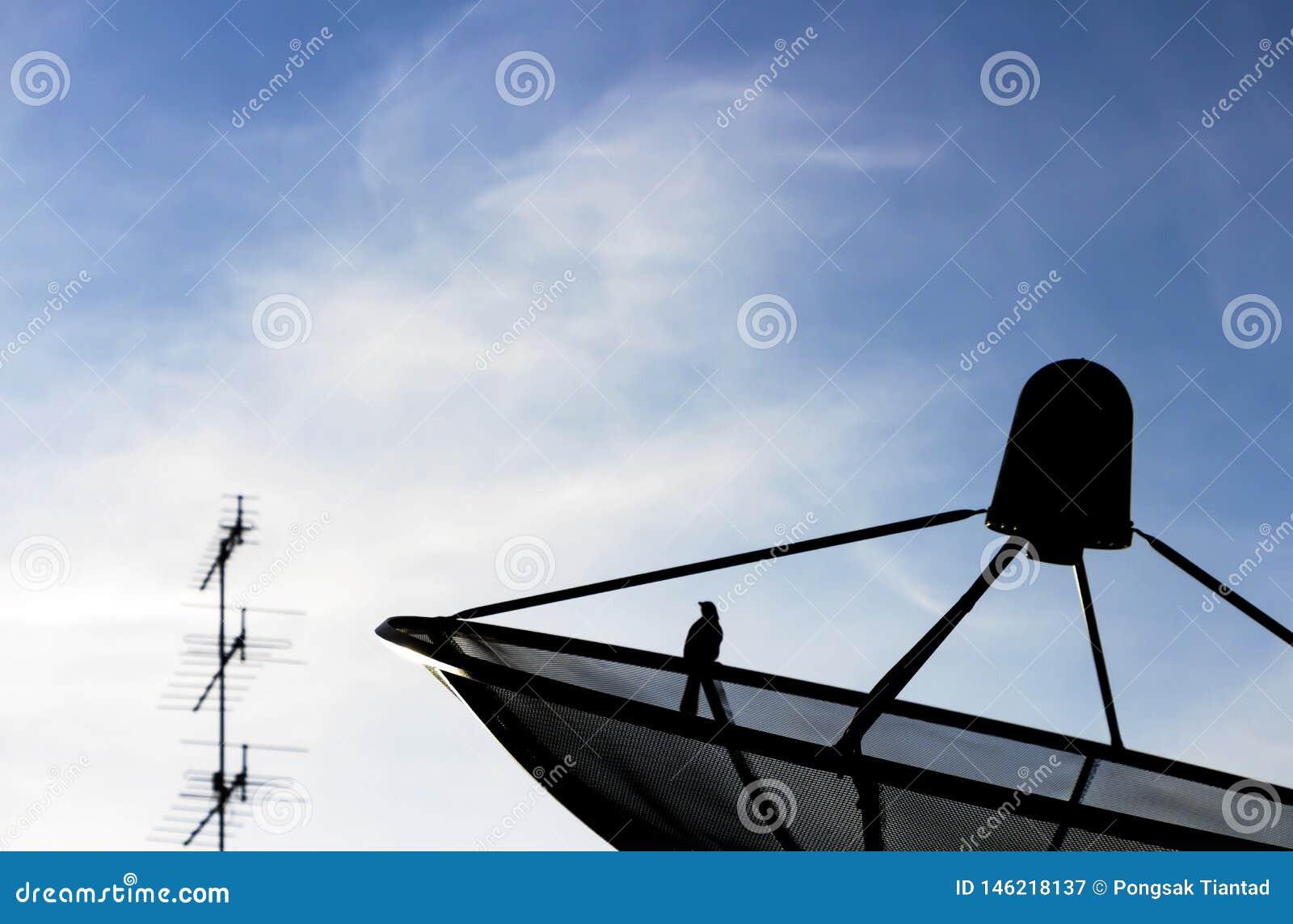 卫星盘ang有天空蔚蓝的电视天线在背景