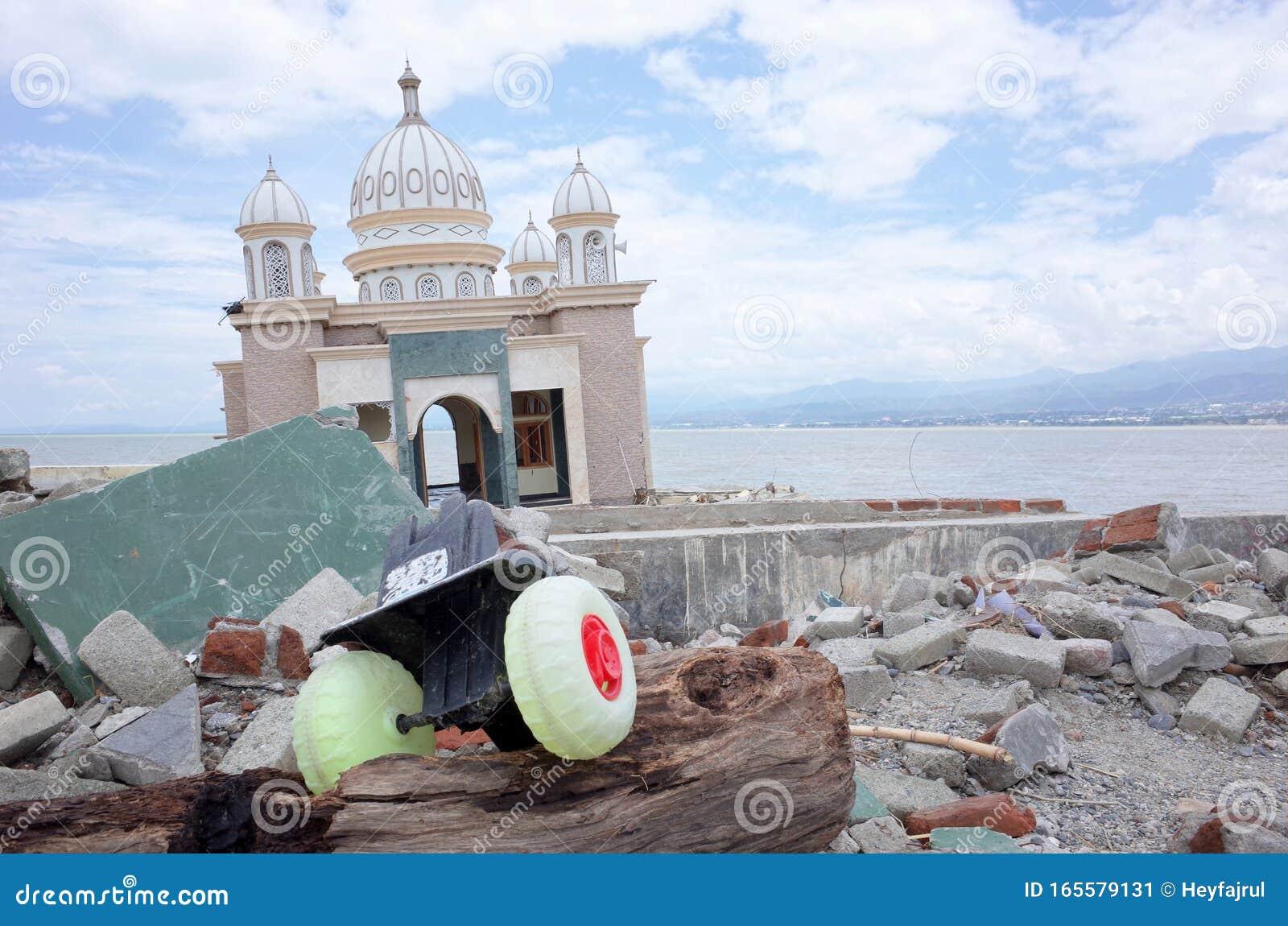 地震 5 11