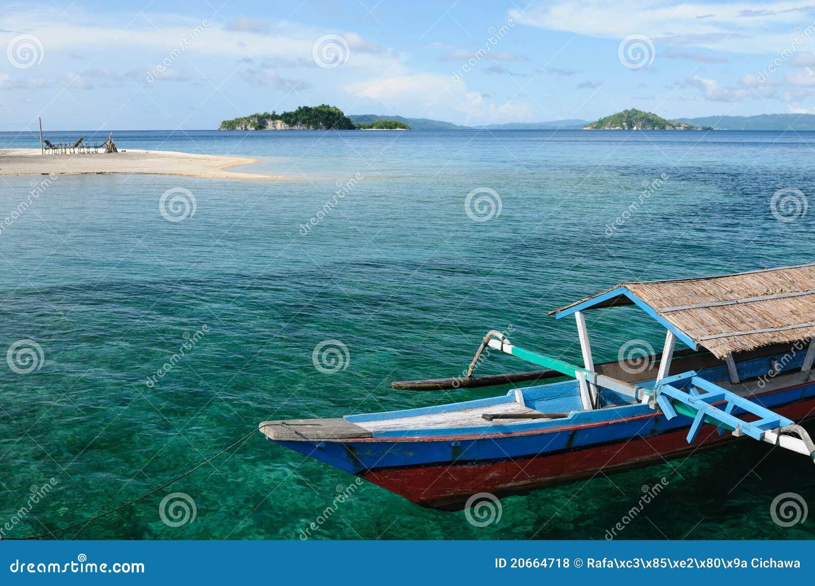 印度尼西亚海岛togean的sulawesi