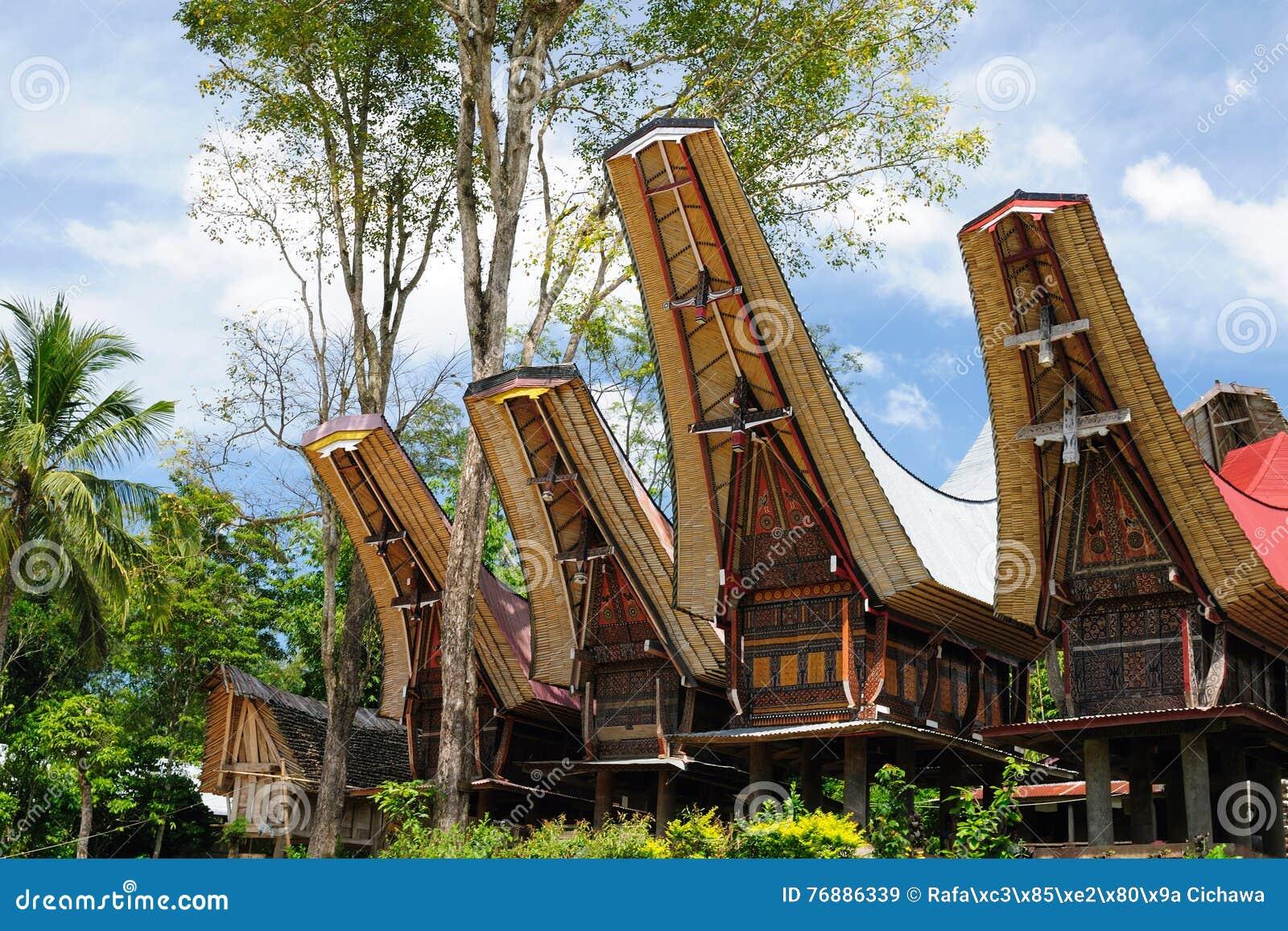 印度尼西亚,苏拉威西岛,塔娜Toraja,传统村庄