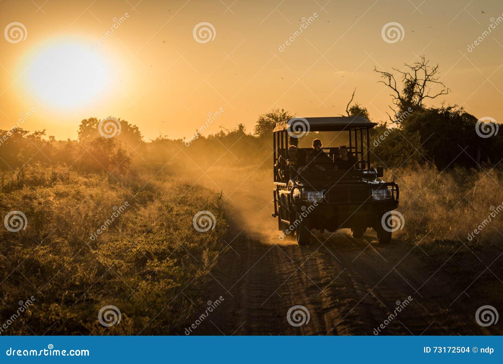 压低多灰尘的轨道的吉普在日落