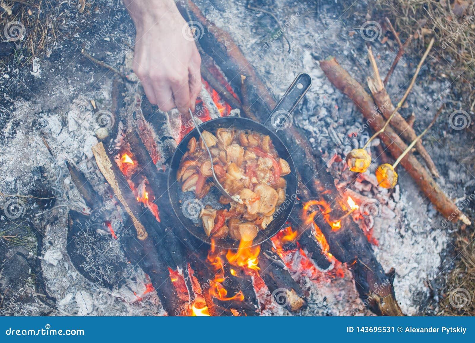 厨师在春天森林准备porcini蘑菇用在一个平底锅的蕃茄在火