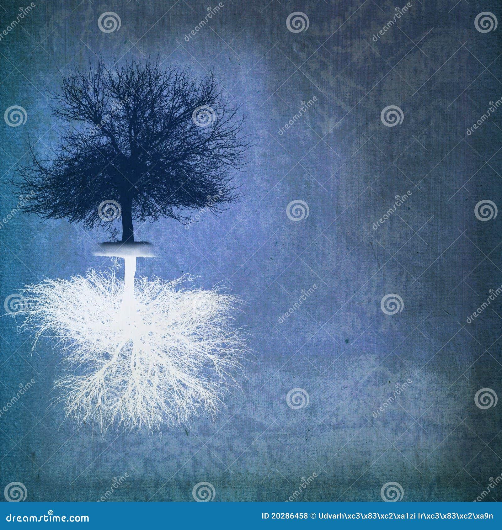 双极结构树