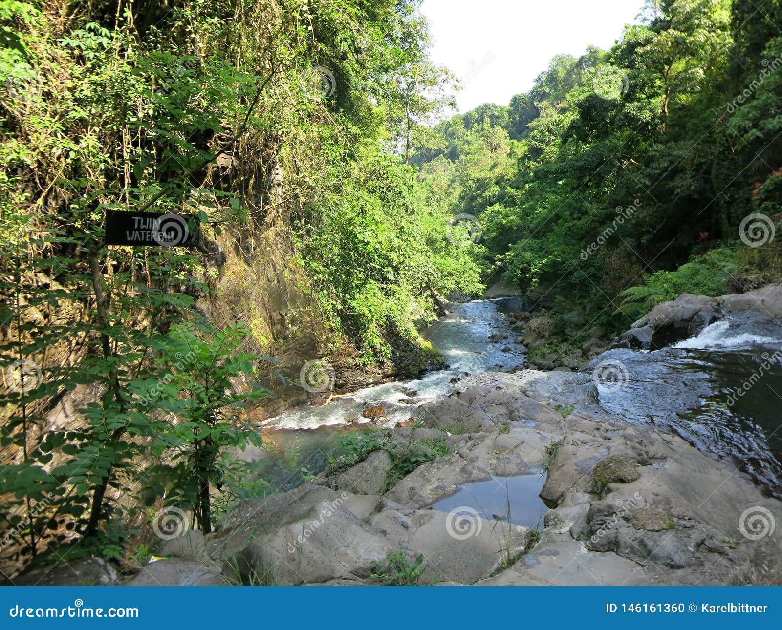 双瀑布在Sambangan秘密花园在巴厘岛,印度尼西亚