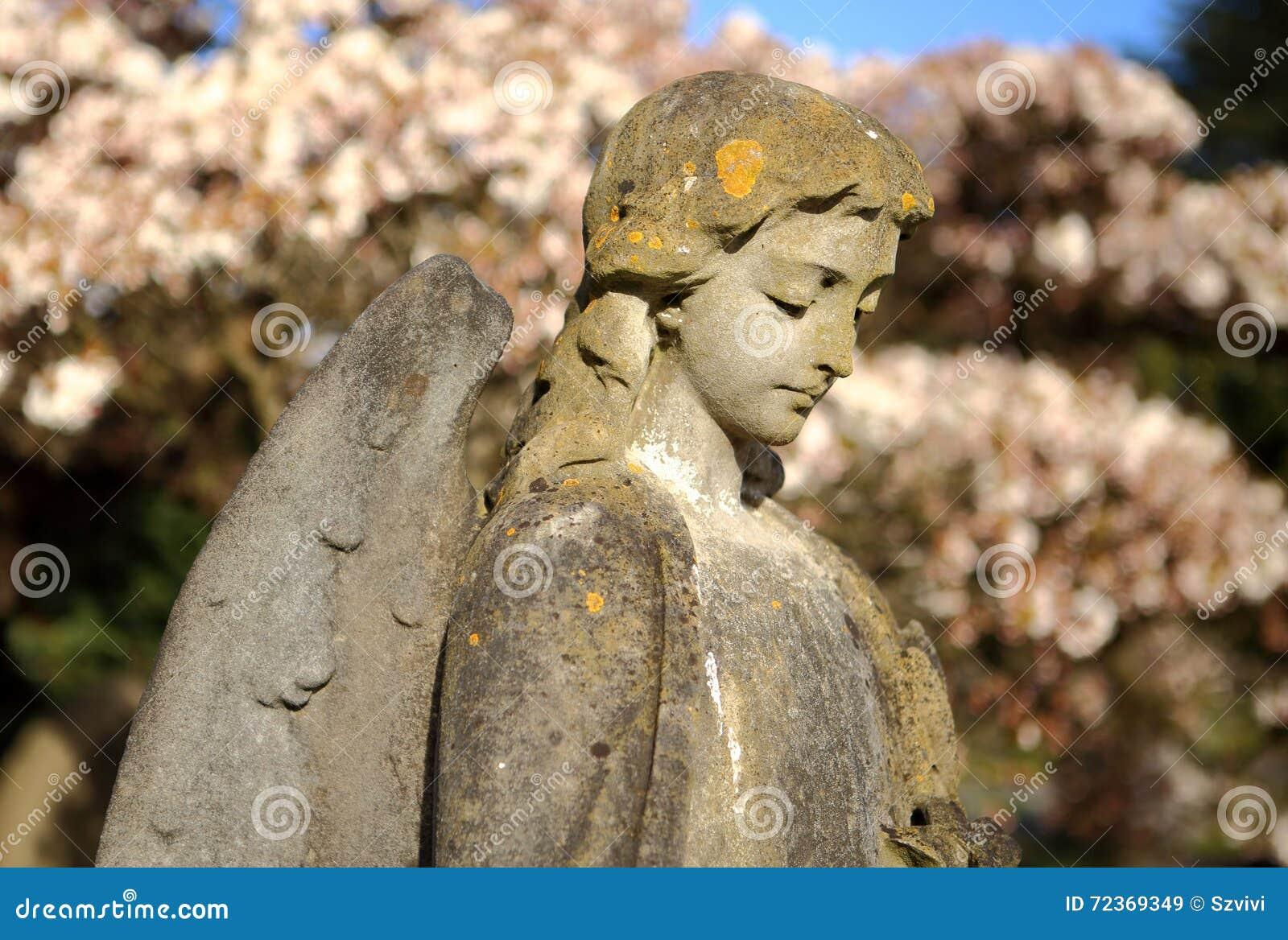 反对开花的树的石天使