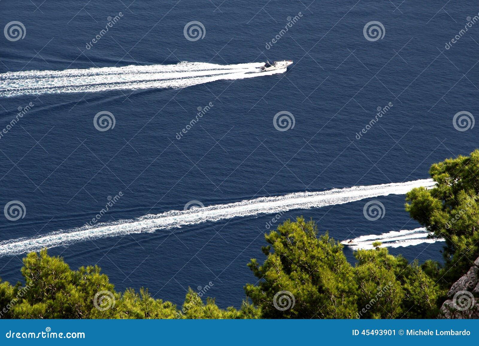 反对蓝色海和树的三艘汽艇