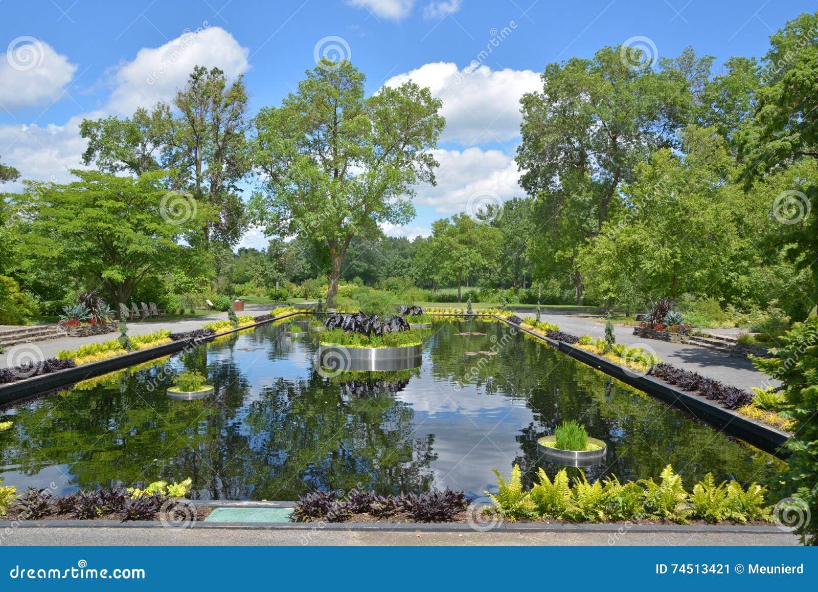 反射的池塘