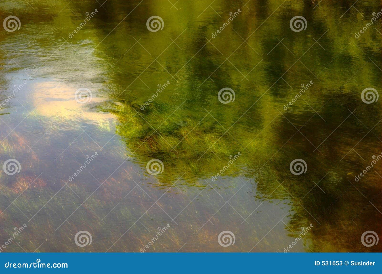 Download 反映河 库存图片. 图片 包括有 结构树, 自然, 本质, 颜色, 反映, 户外, 抽象, 背包 - 531653
