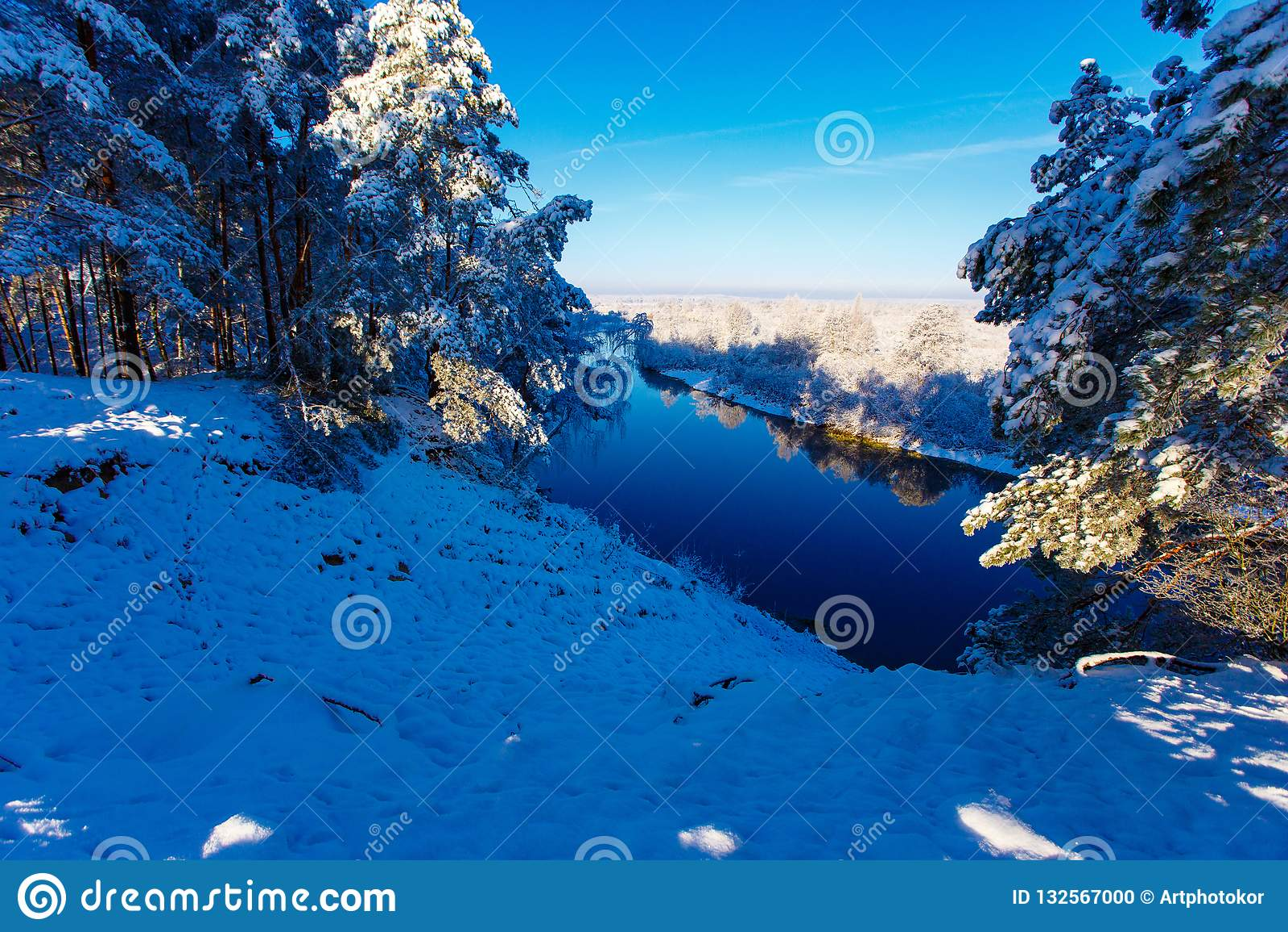 发光在多雪的森林的使目炫太阳
