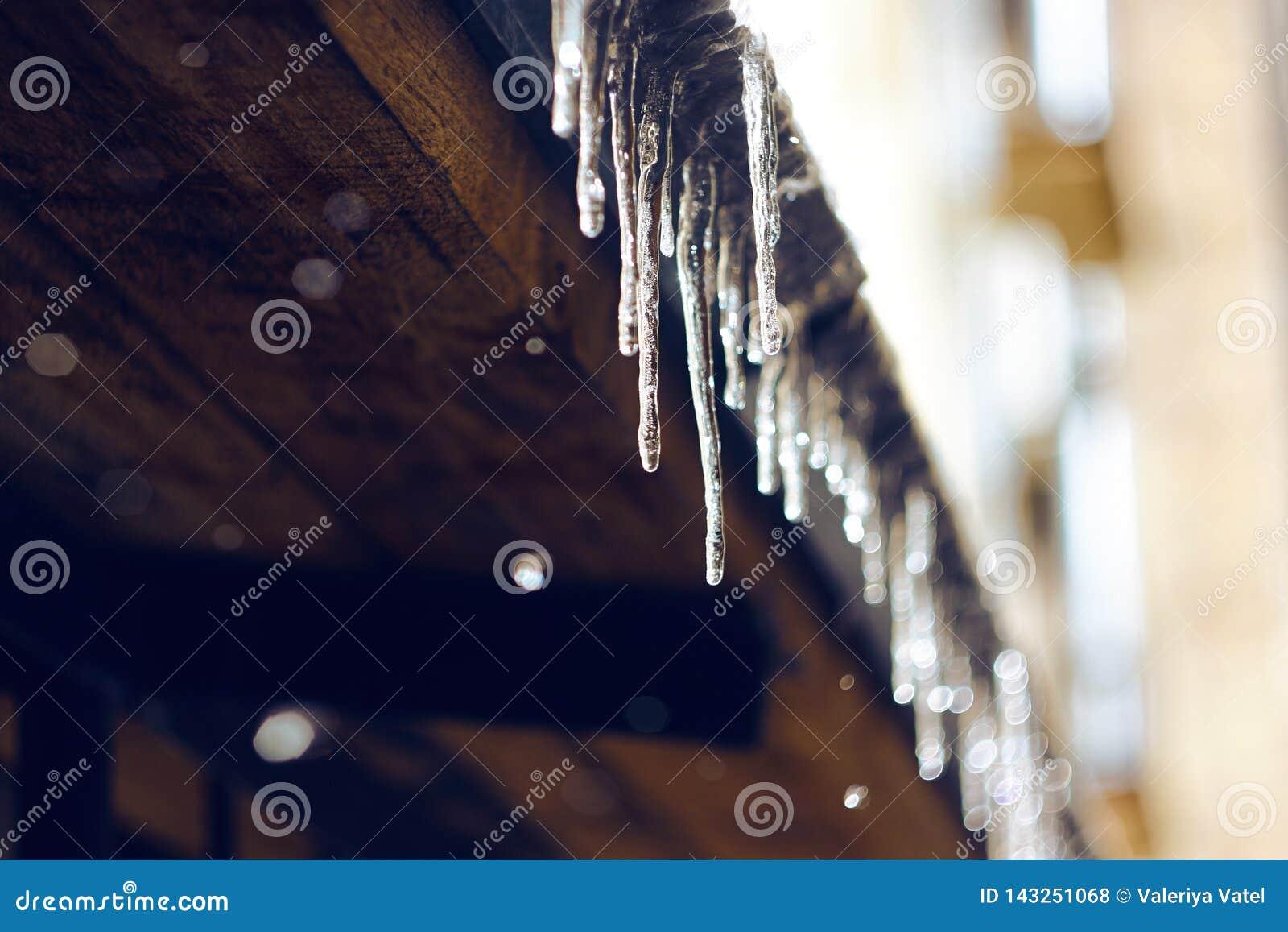 发光在阳光下和垂悬从屋顶的冰柱