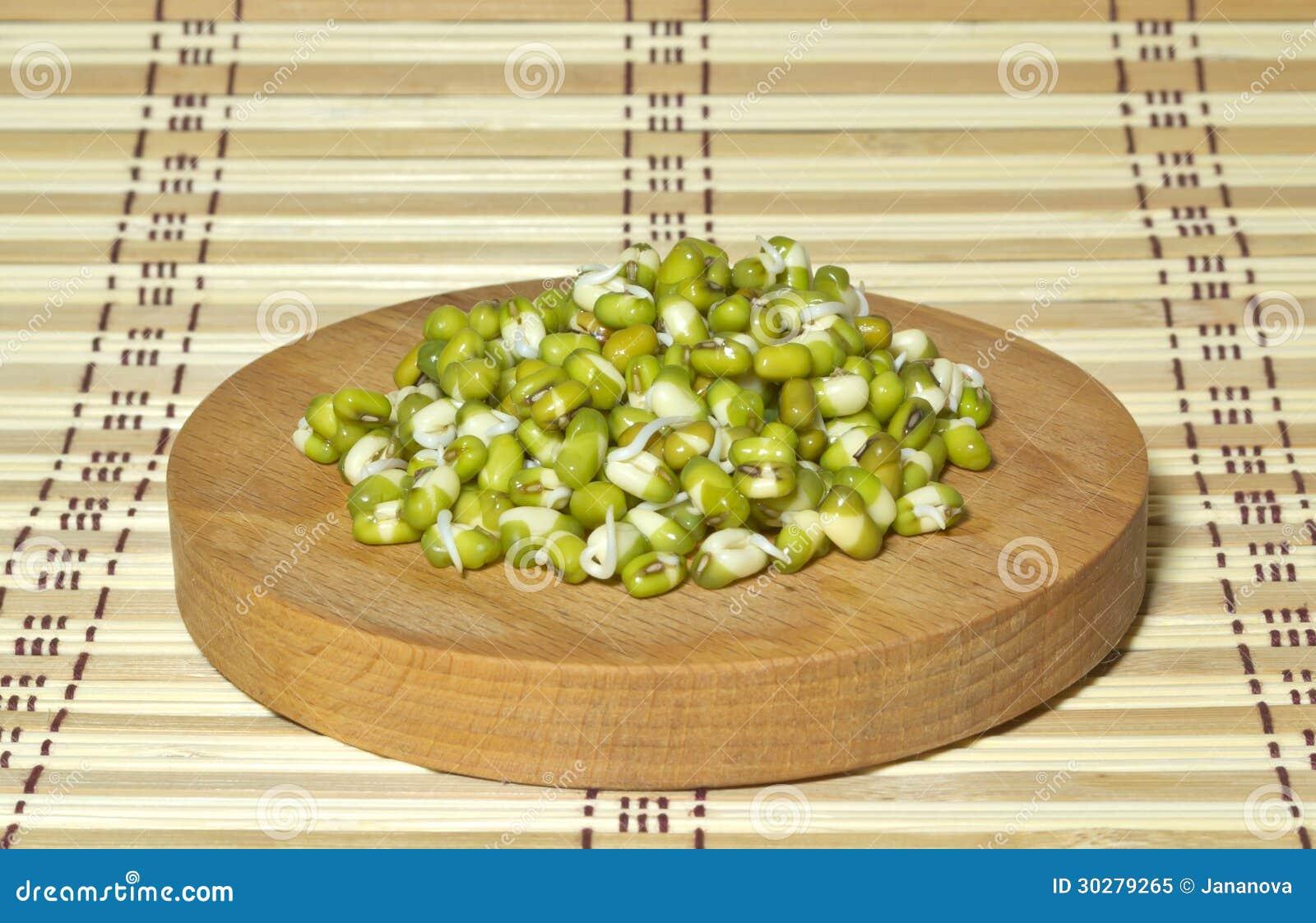 发芽的豆。