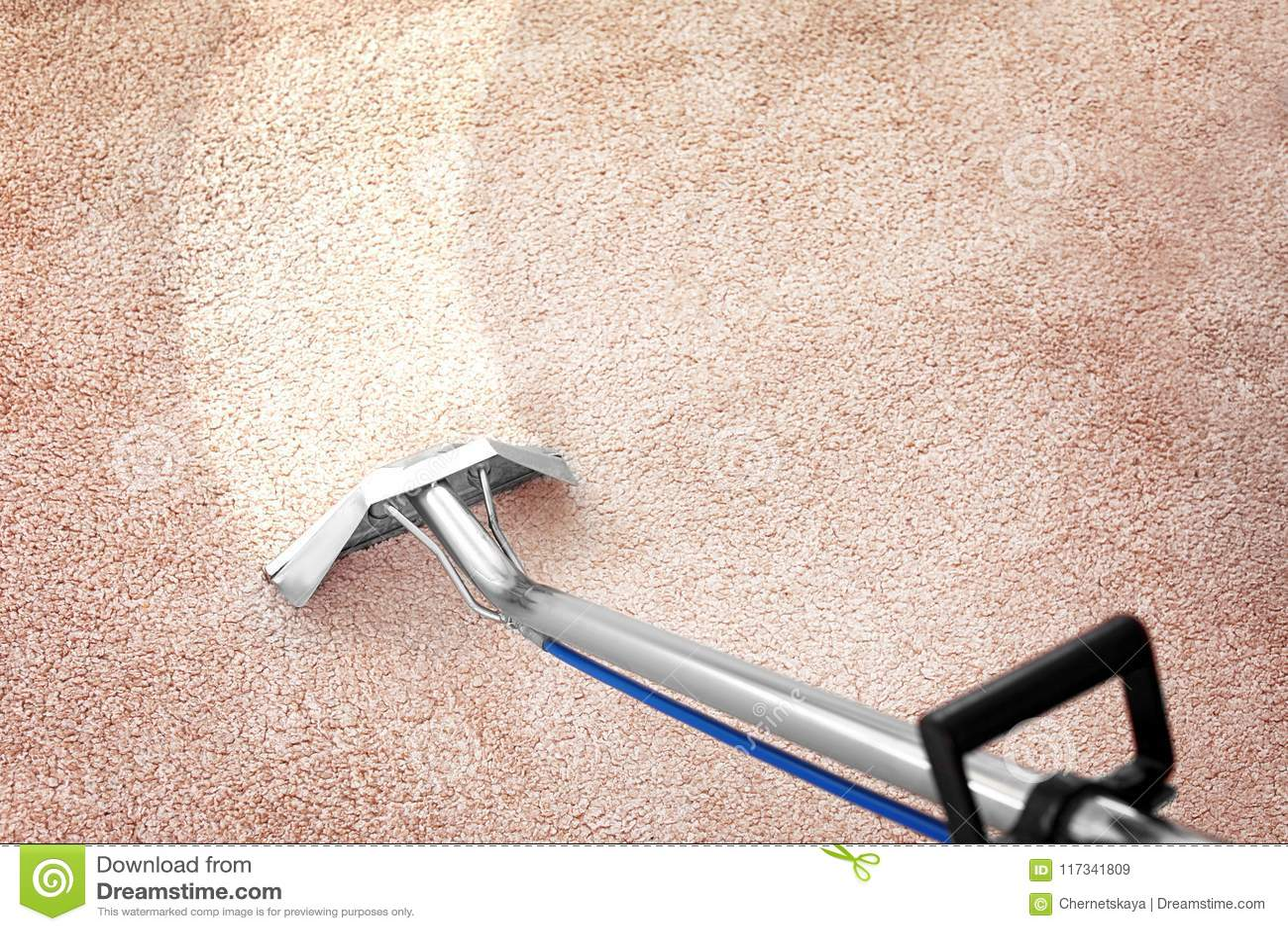 取消土从地毯与专业擦净剂户内