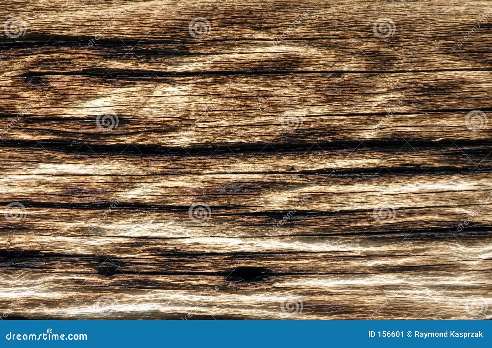 变老的木头