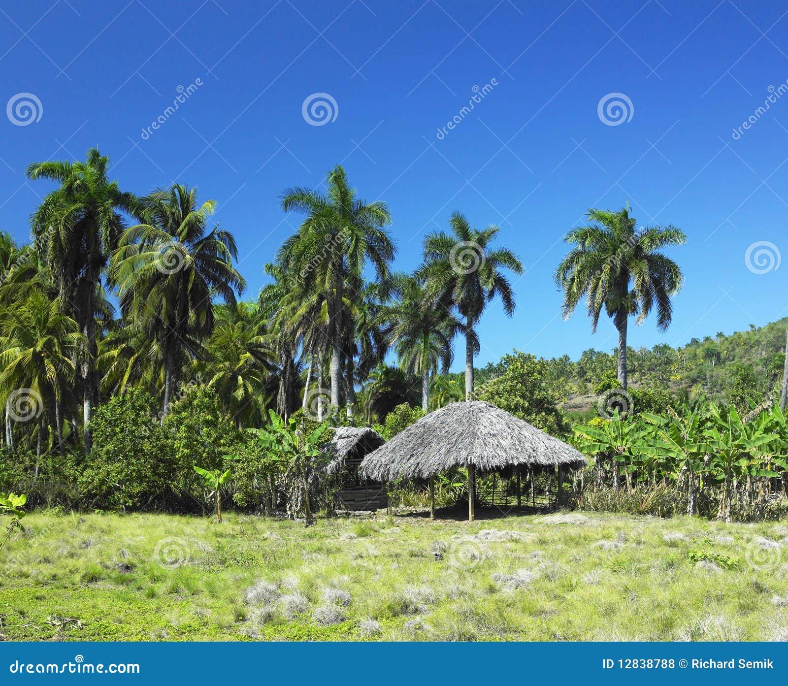 古巴国家公园