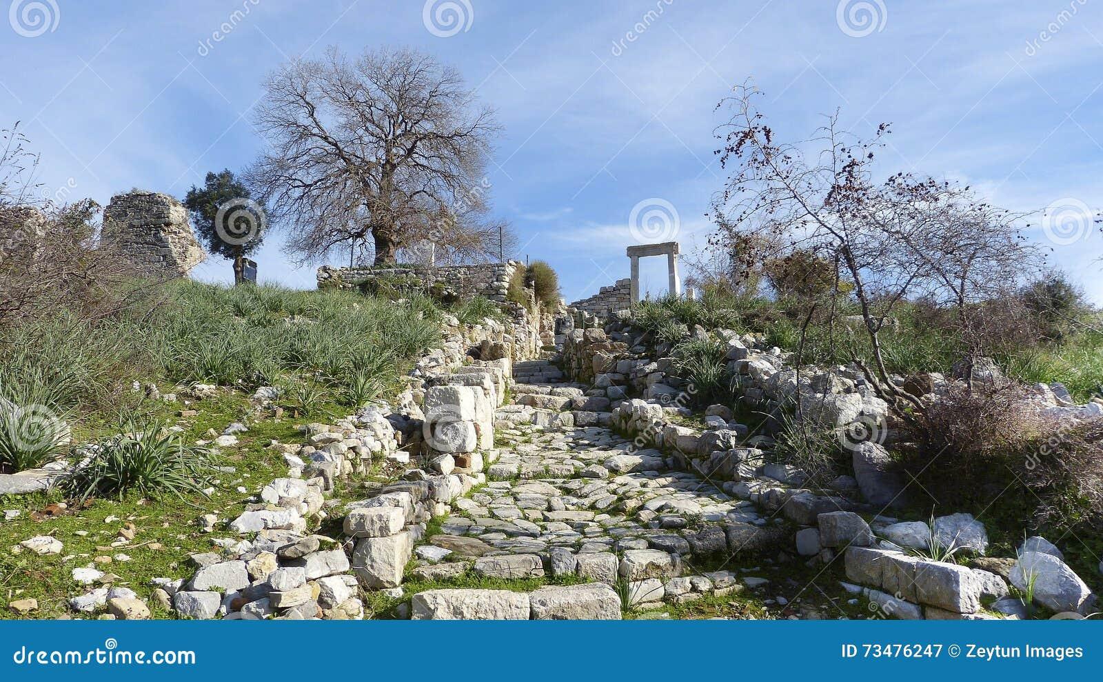 古老台阶废墟在Kaunos