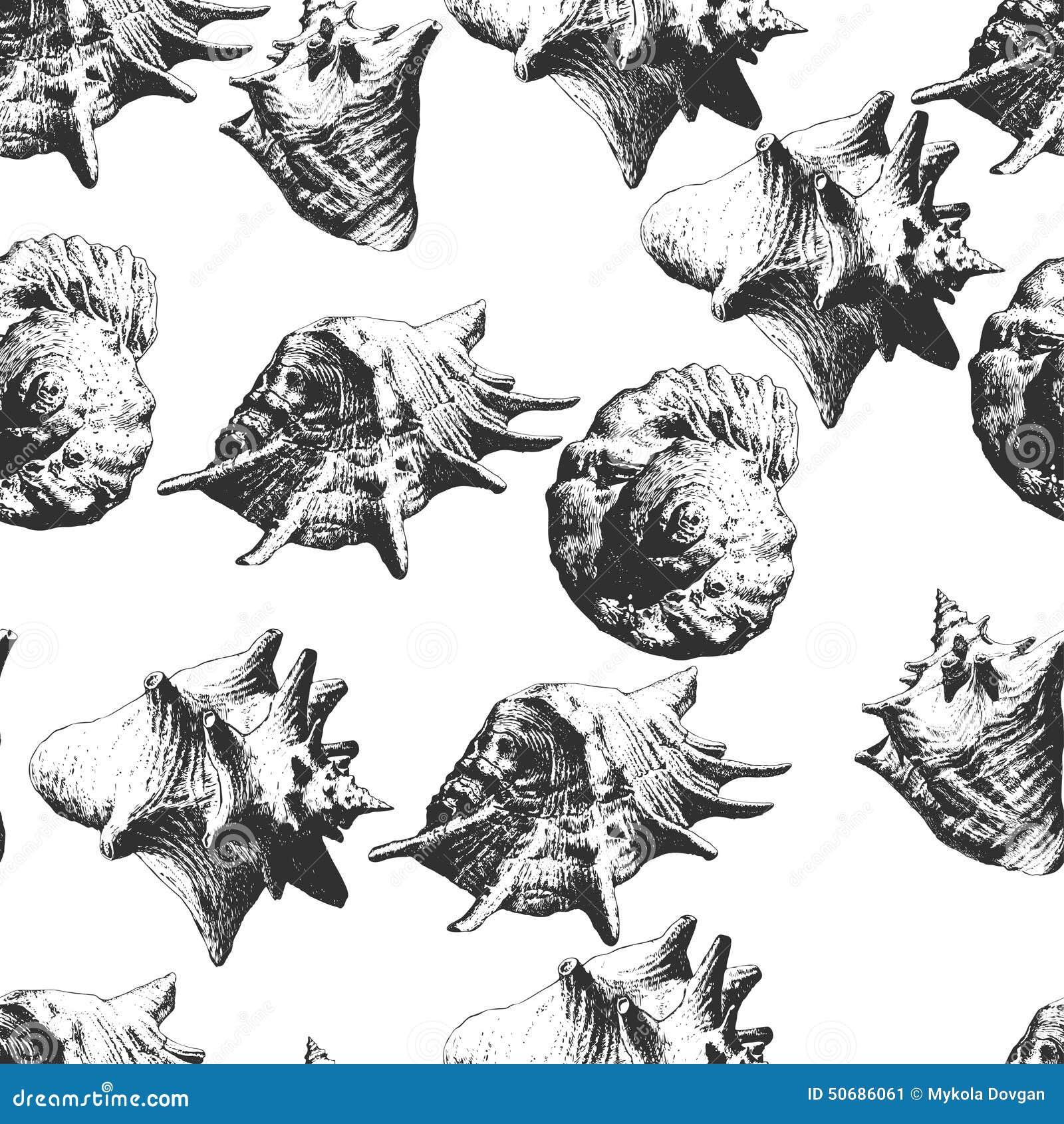 Download 另外模式无缝的壳 库存例证. 插画 包括有 礁石, 要素, 海鲜, 珊瑚, 设计, 扇贝, 海扇壳, 华丽 - 50686061