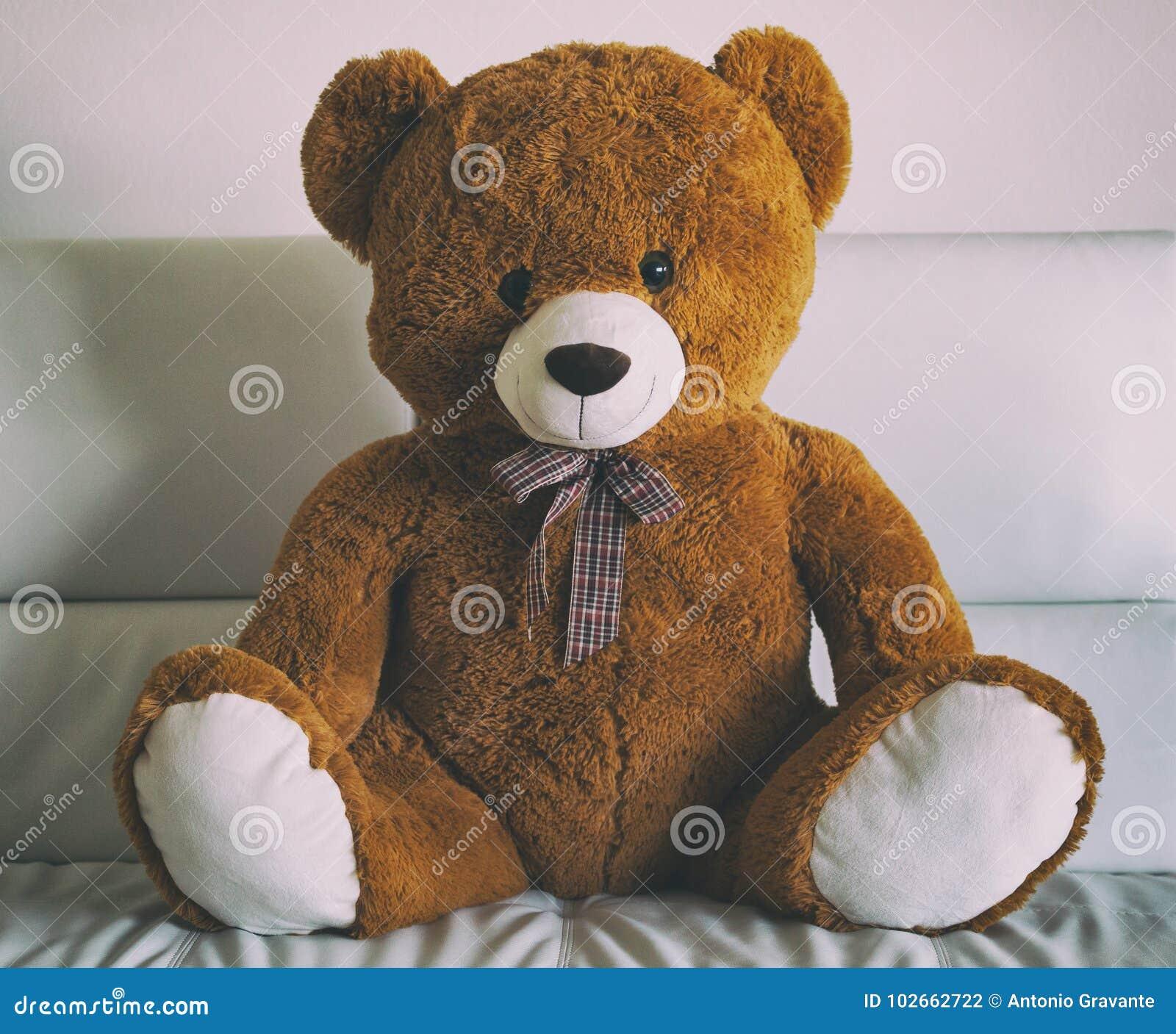 可爱的玩具熊坐沙发