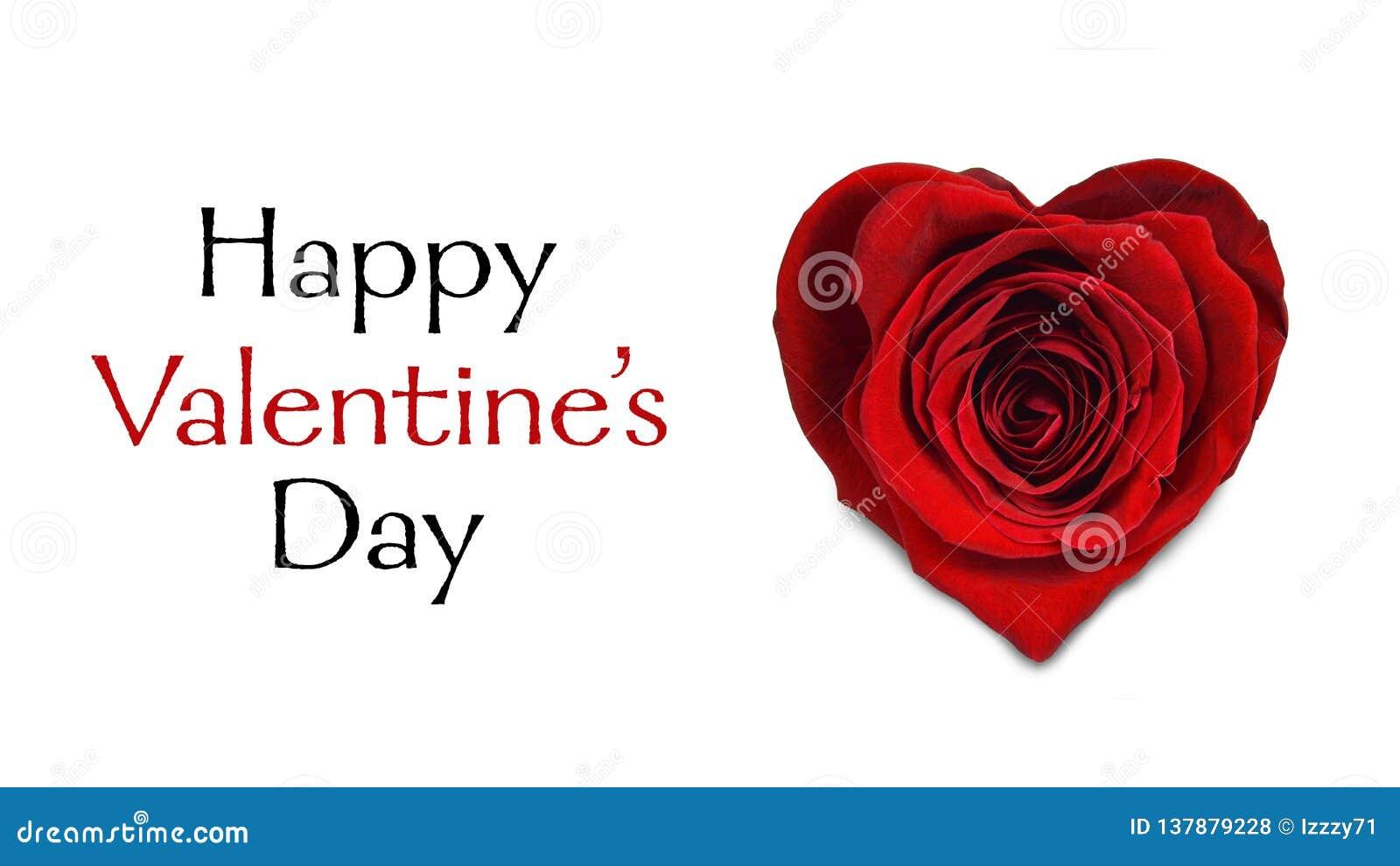 可用的看板卡日文件华伦泰向量 在白色隔绝的心脏形状的红色玫瑰