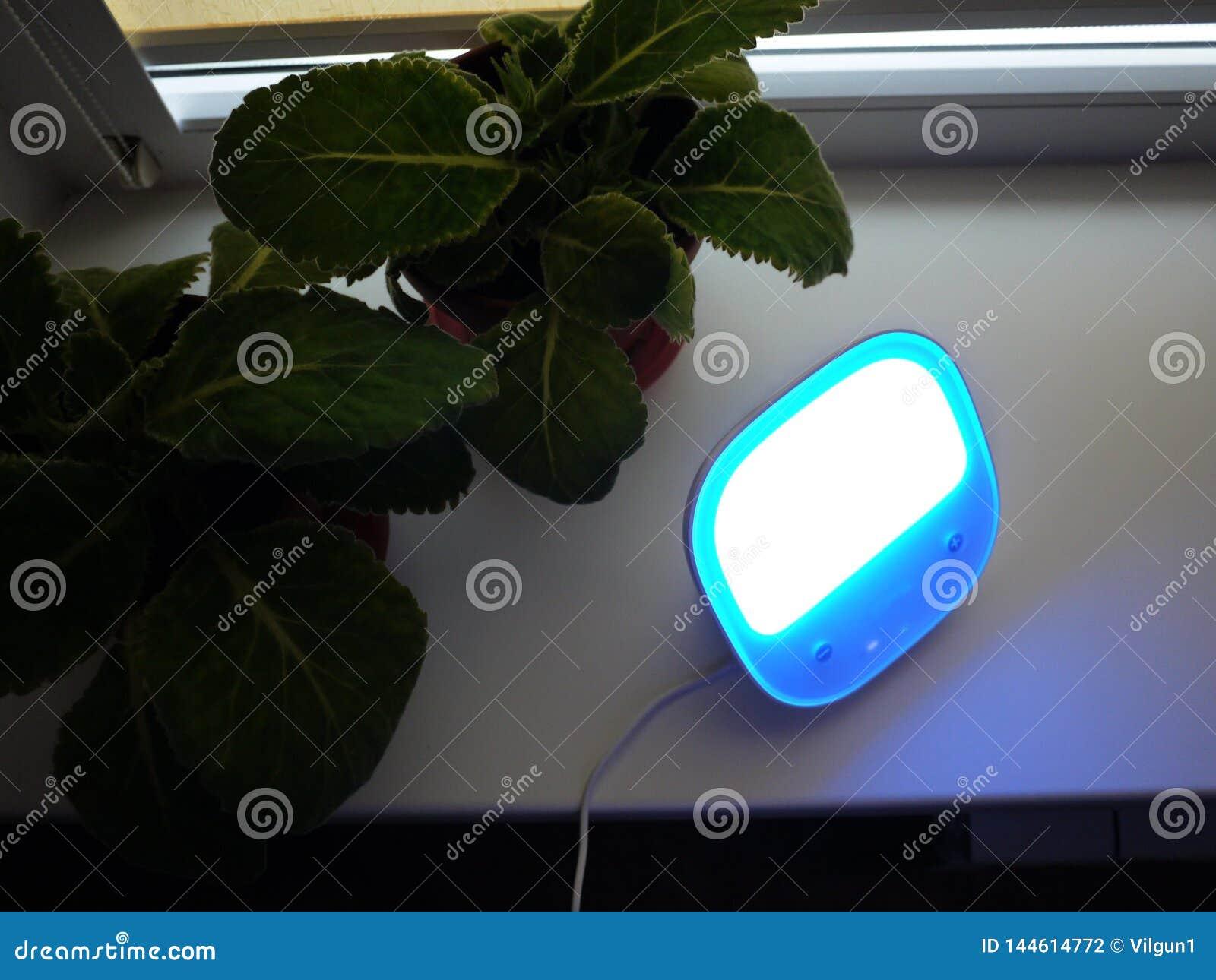 台灯在家 使用为点燃各种各样的表面,LED电灯泡