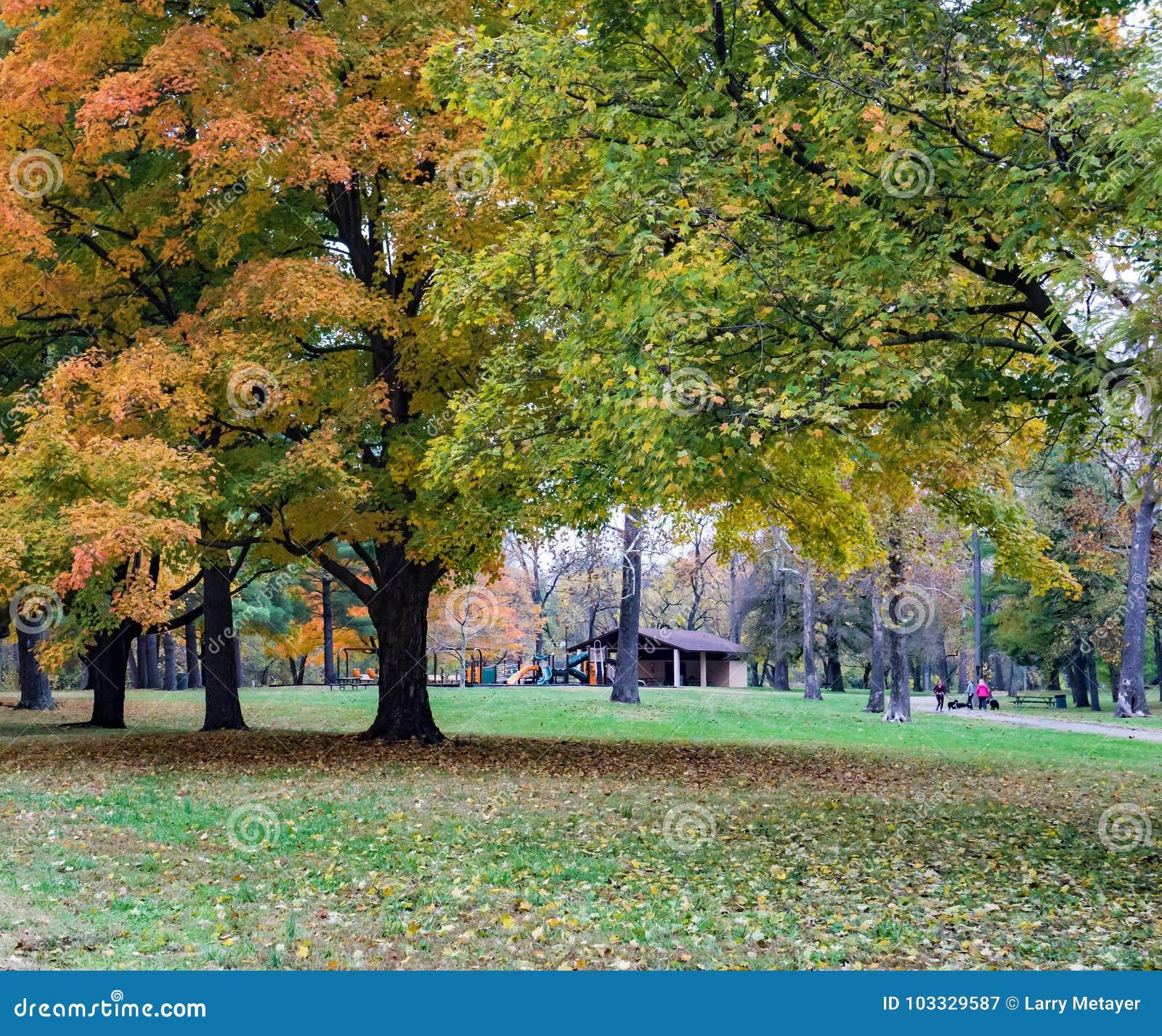 史密斯公园,罗阿诺克,弗吉尼亚,美国秋天视图