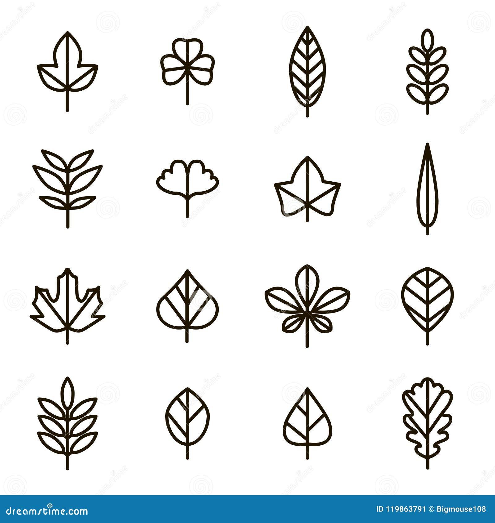 叶子标志黑色稀薄的线象集合 向量