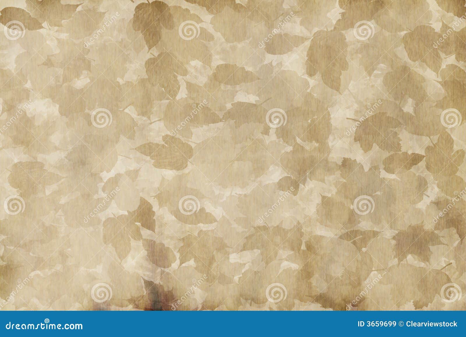 叶茂盛老纸羊皮纸