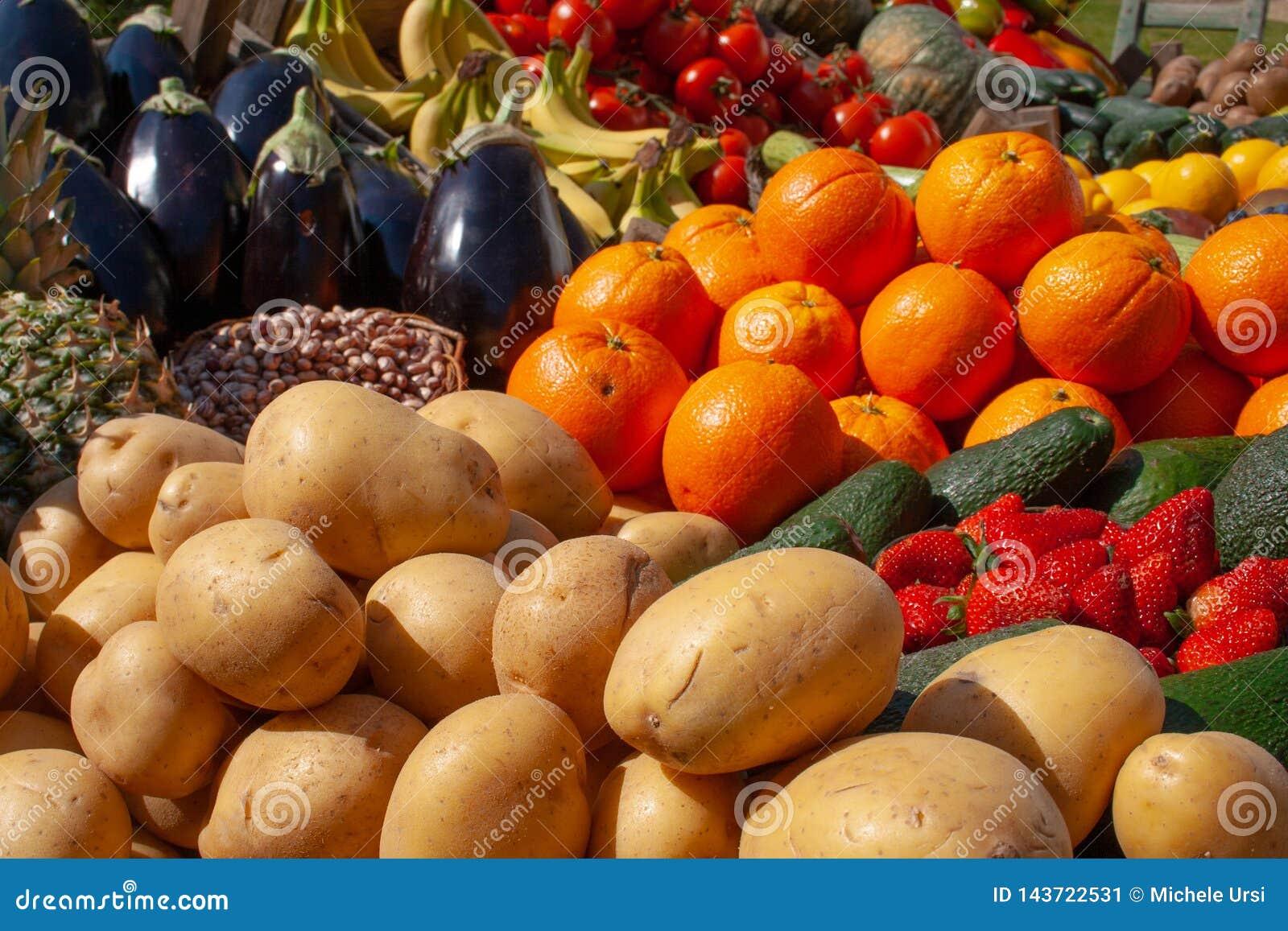 各种各样的新鲜的生物蔬菜和水果