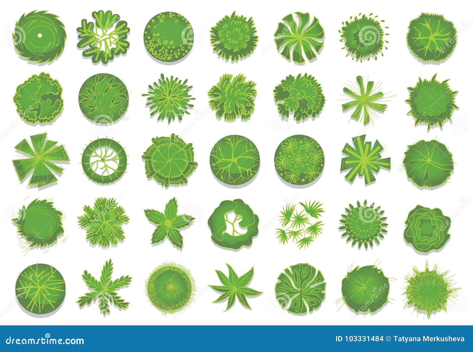 各种各样的绿色树、灌木和灌木,风景设计规划的顶视图 套传染媒介例证,隔绝在a