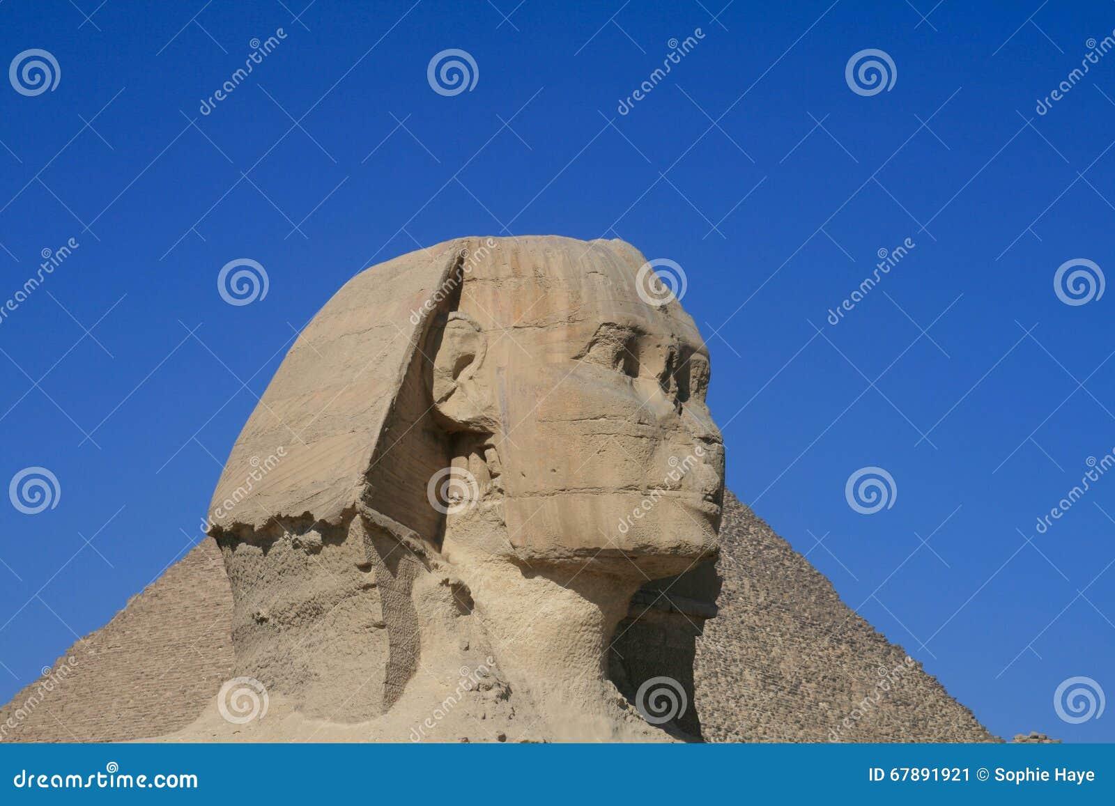 吉萨棉狮身人面象在埃及