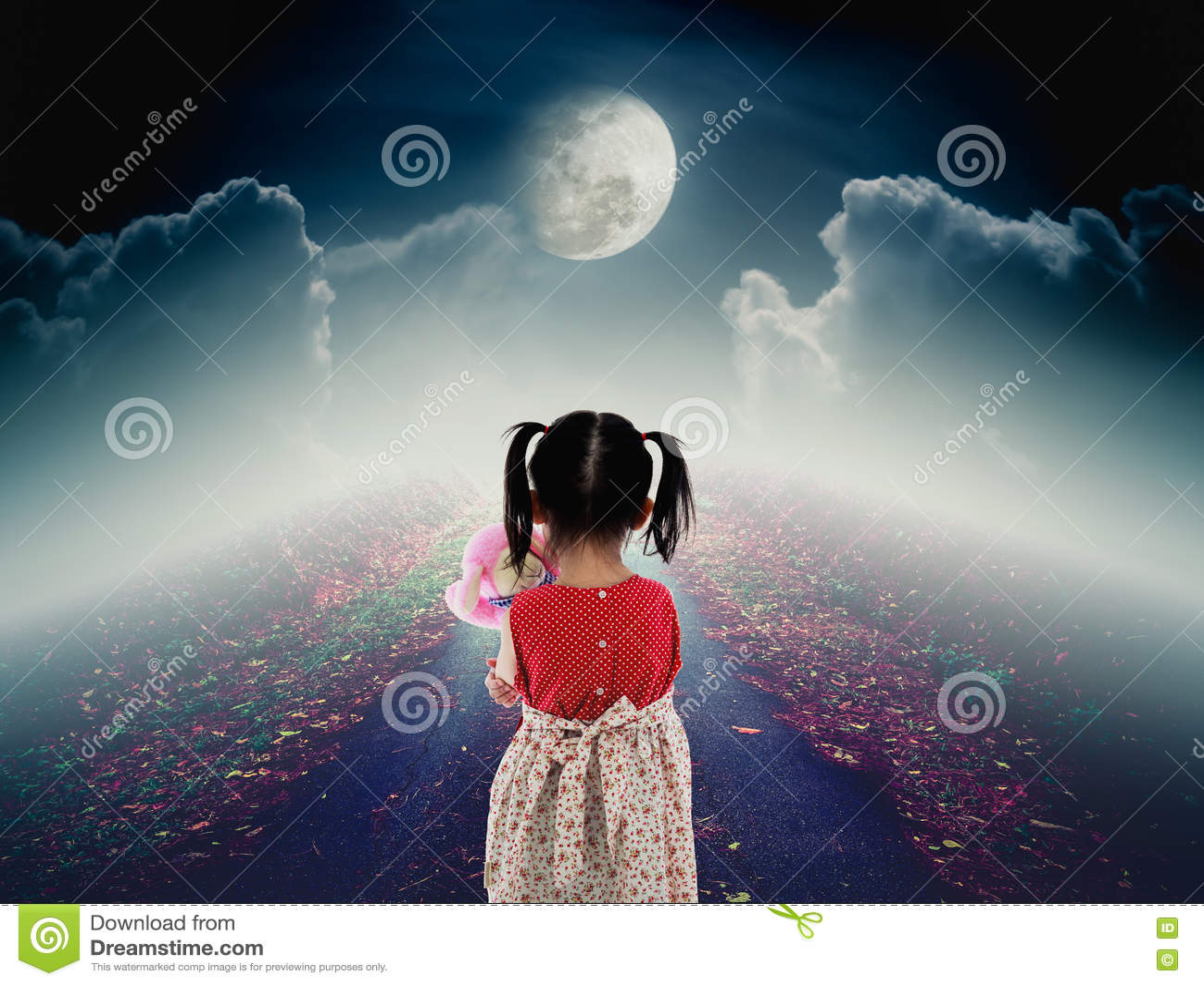 后面观点的有玩偶哀伤的姿态的孤独的孩子在路与