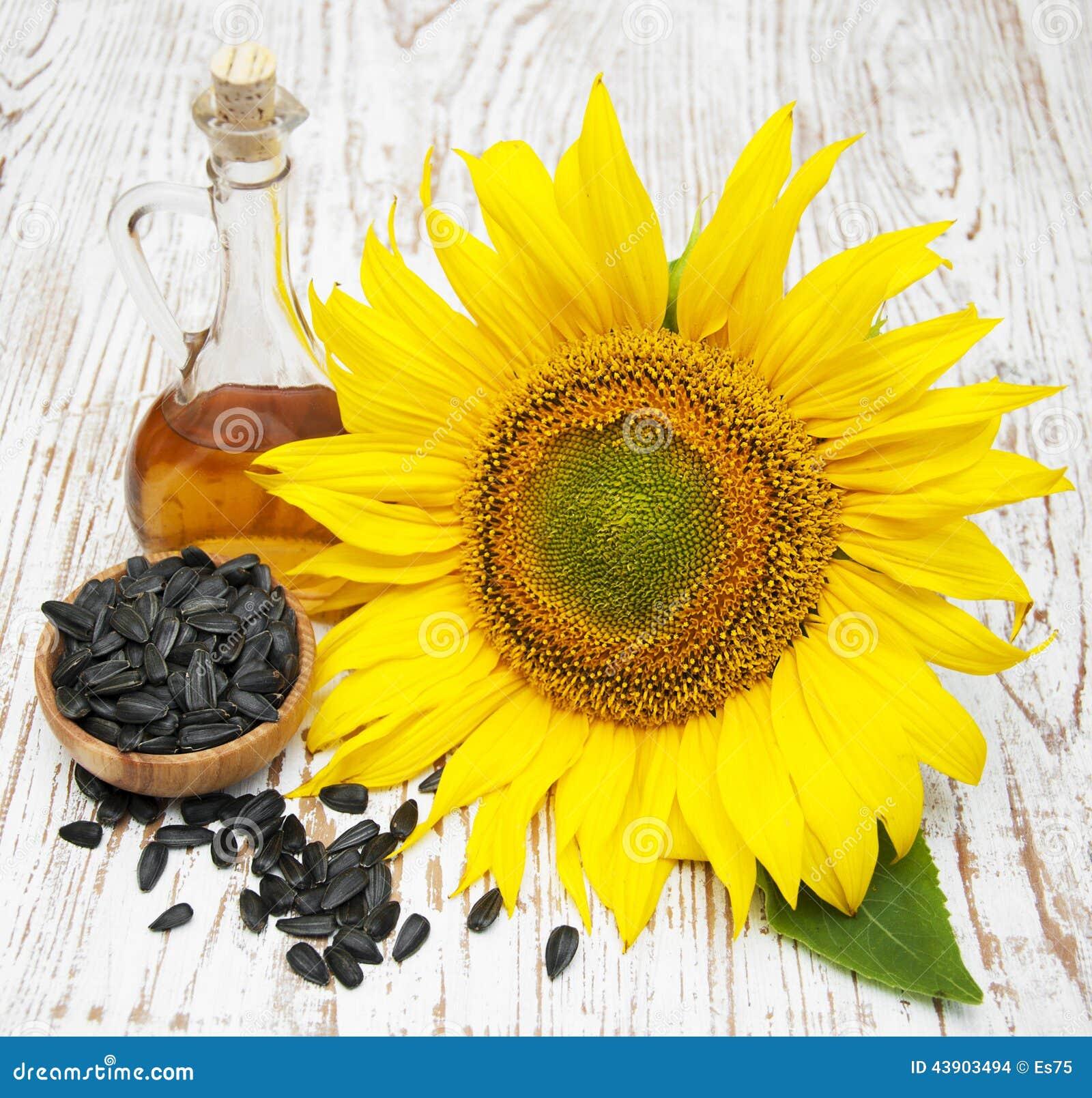 向日葵种子_向日葵种子和油在木背景.