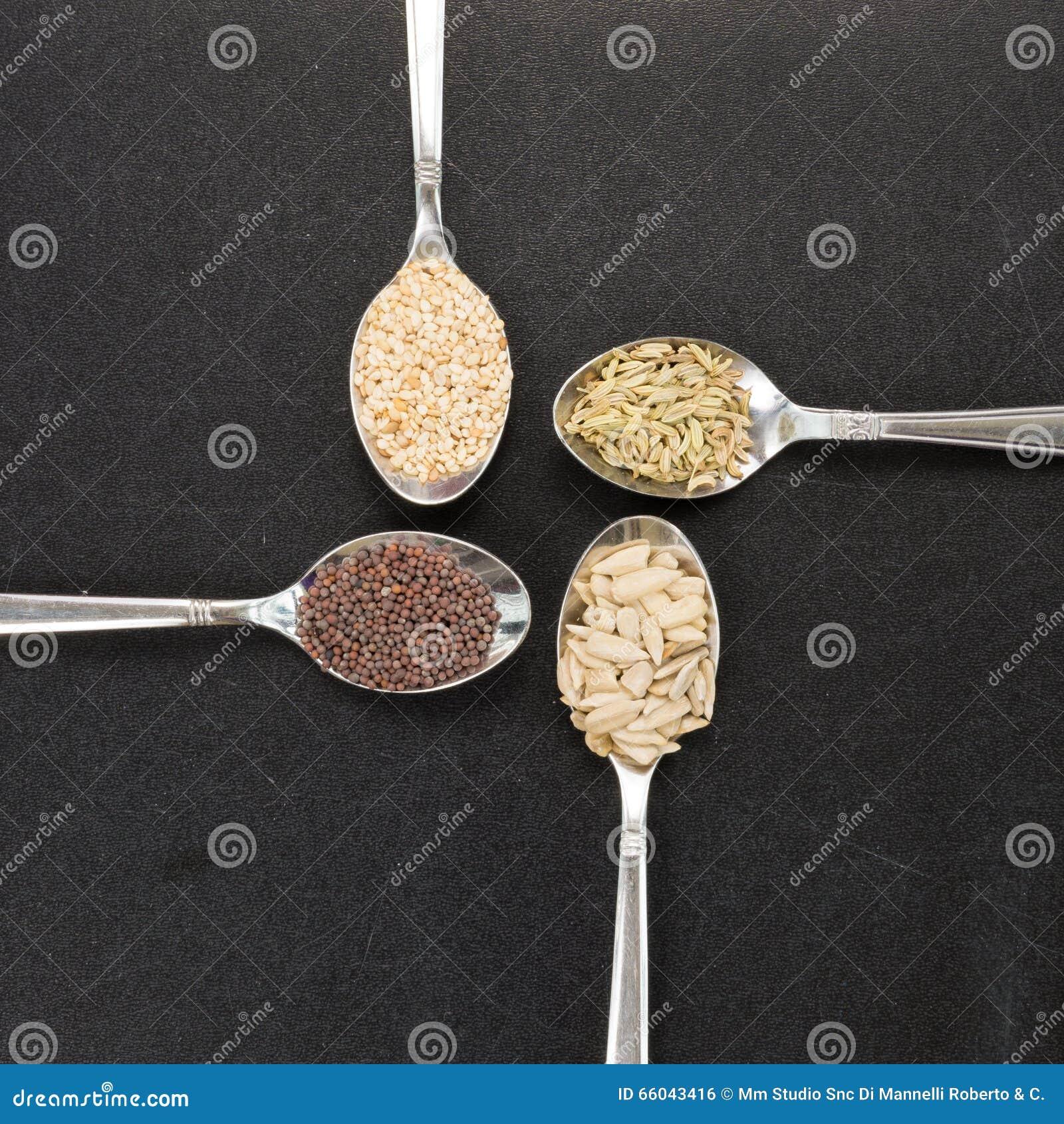 向日葵芝麻茴香长寿的食物的芥菜籽匙子