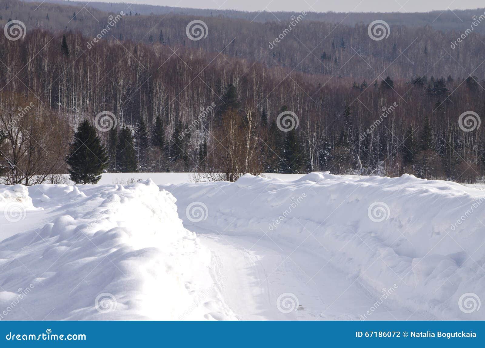 向木头的路在冬天
