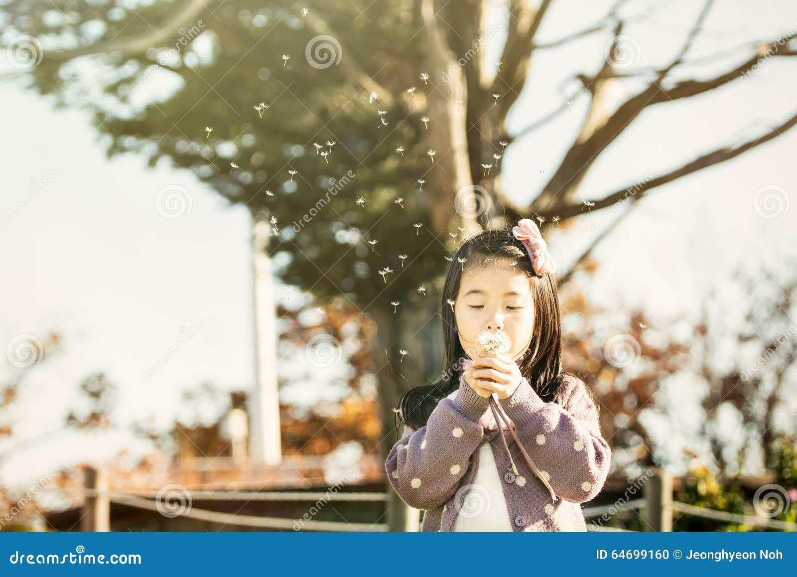 吹一个蒲公英的孩子在公园