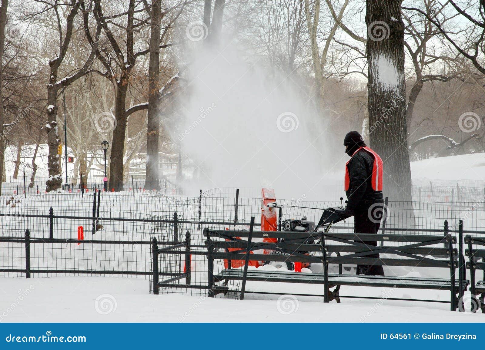 吹的公园雪