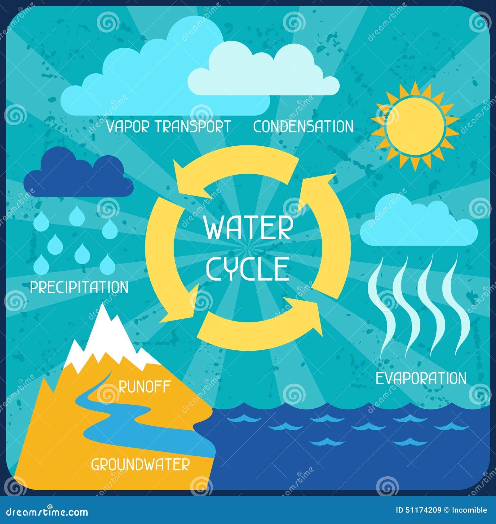 水周期 与自然infographics的海报