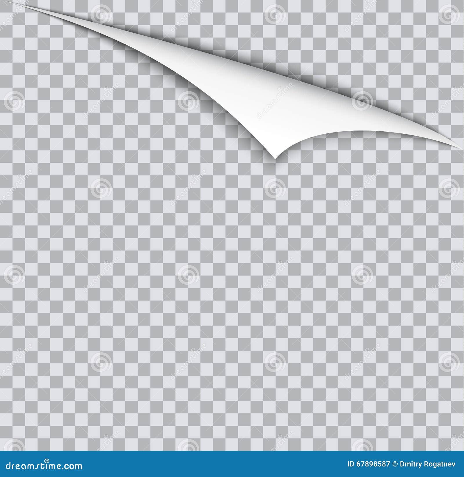 呼叫与阴影的卷毛在空白的纸片