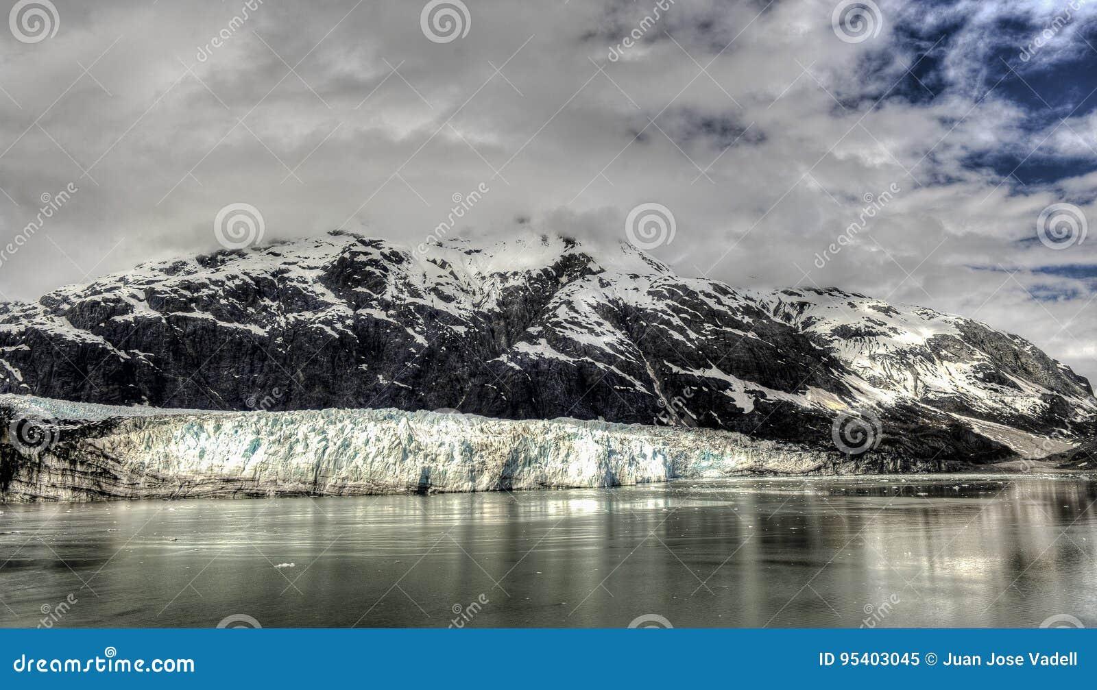 延命菊冰川在阿拉斯加` s冰河海湾国家公园