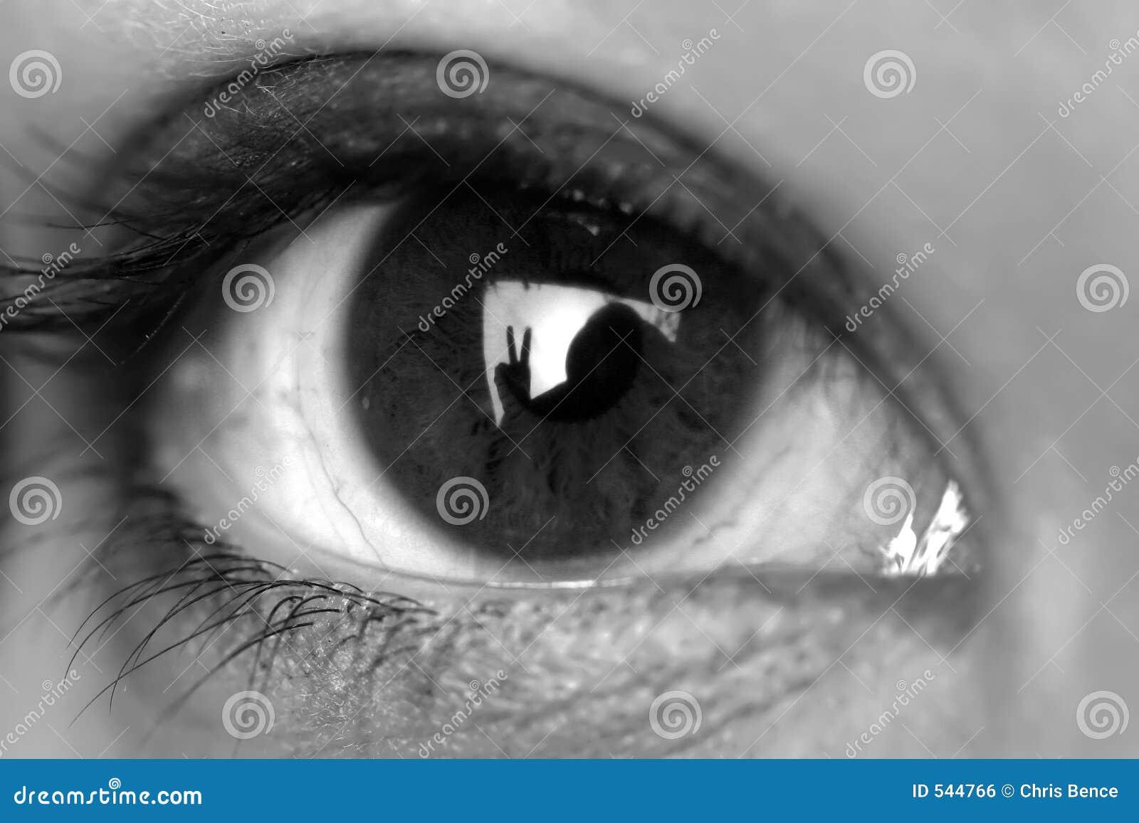 Download 和平 库存照片. 图片 包括有 眼睛, 投反对票, 竹子, 妇女, 空白, 和平, 鞭子, 关闭, 详细资料 - 544766