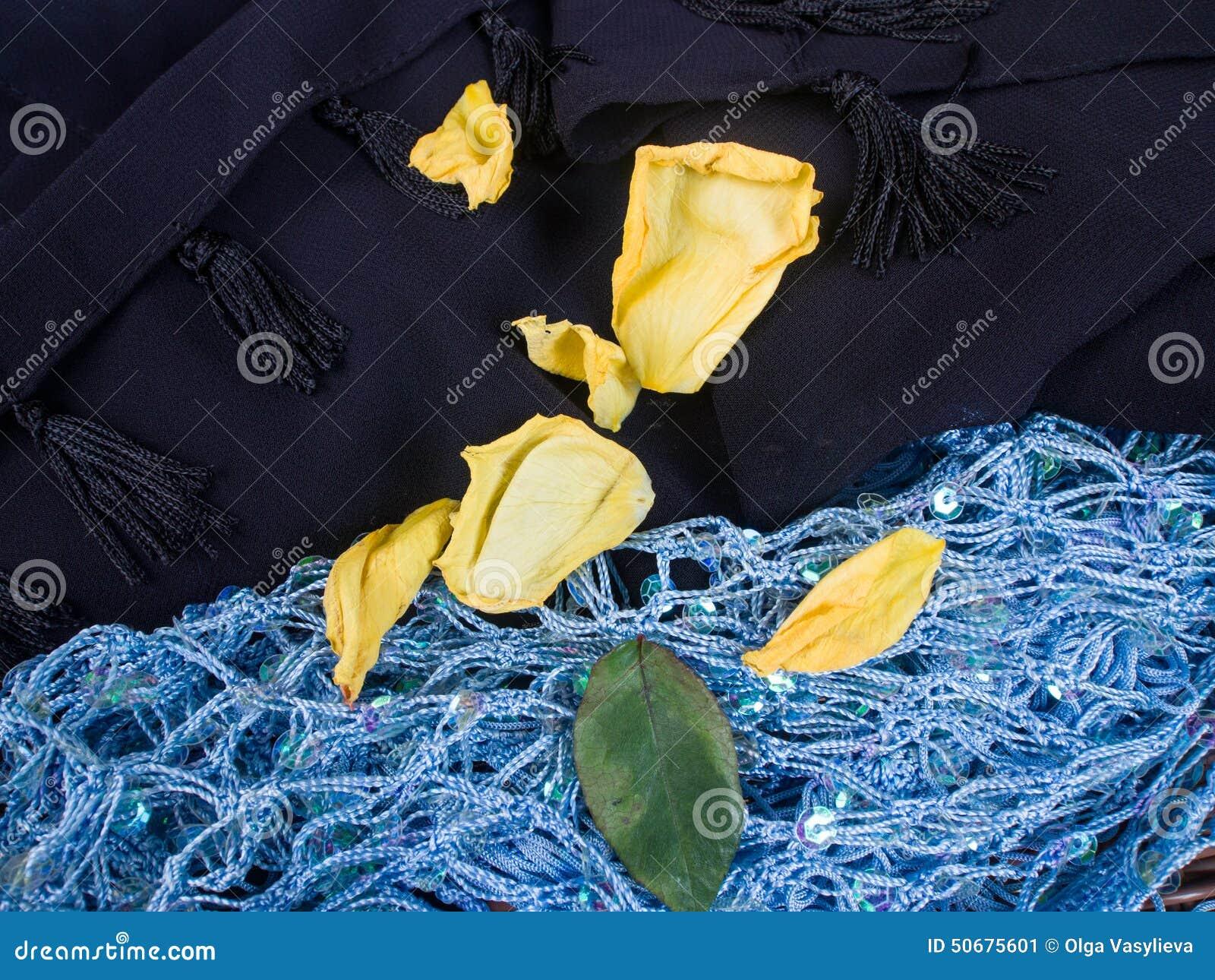 Download 黑和蓝色围巾 库存图片. 图片 包括有 蓝色, 纹理, 模式, 衣物, 葡萄酒, 结构, 围巾, 风土化 - 50675601