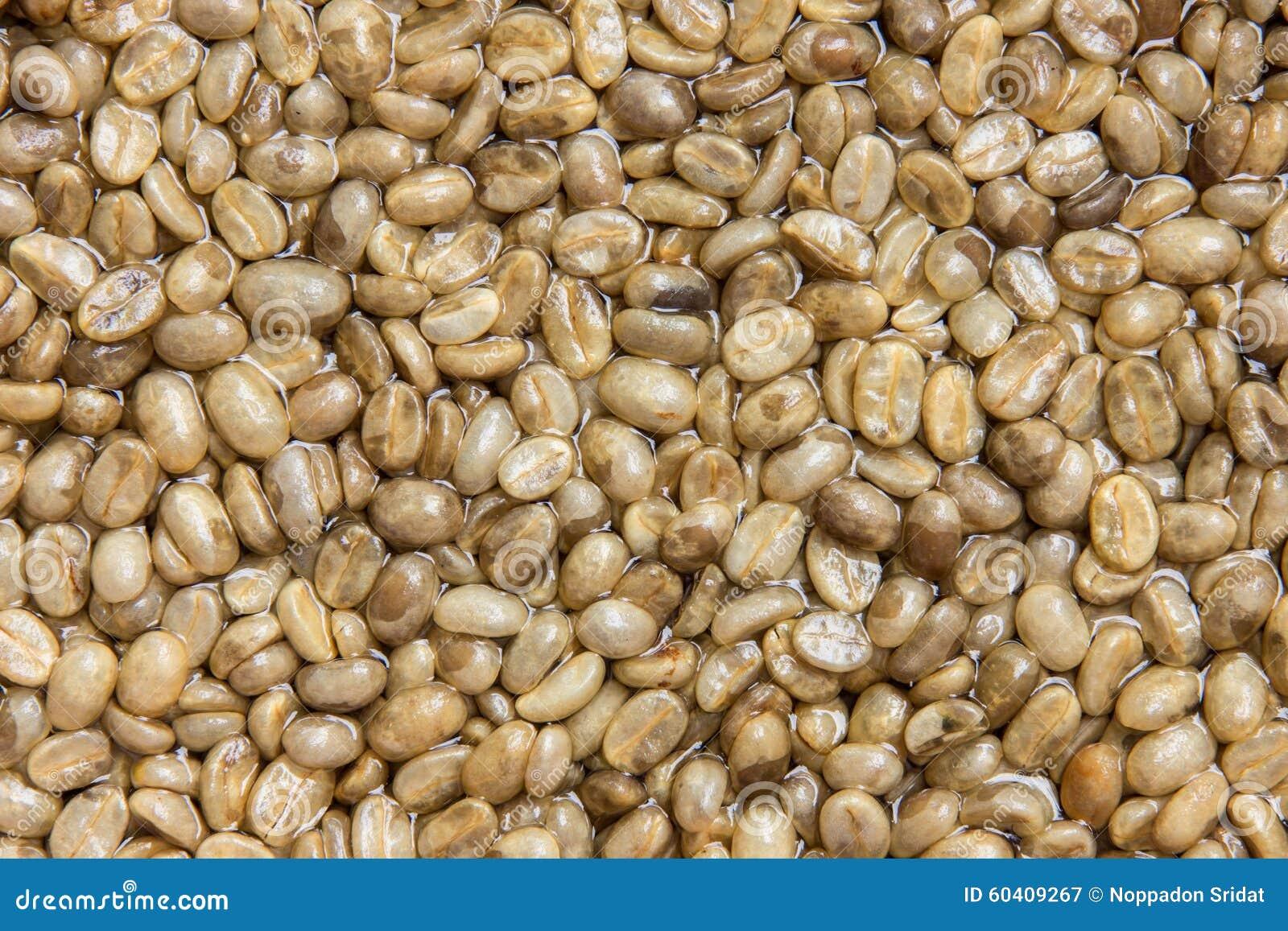 咖啡不是种子烘烤